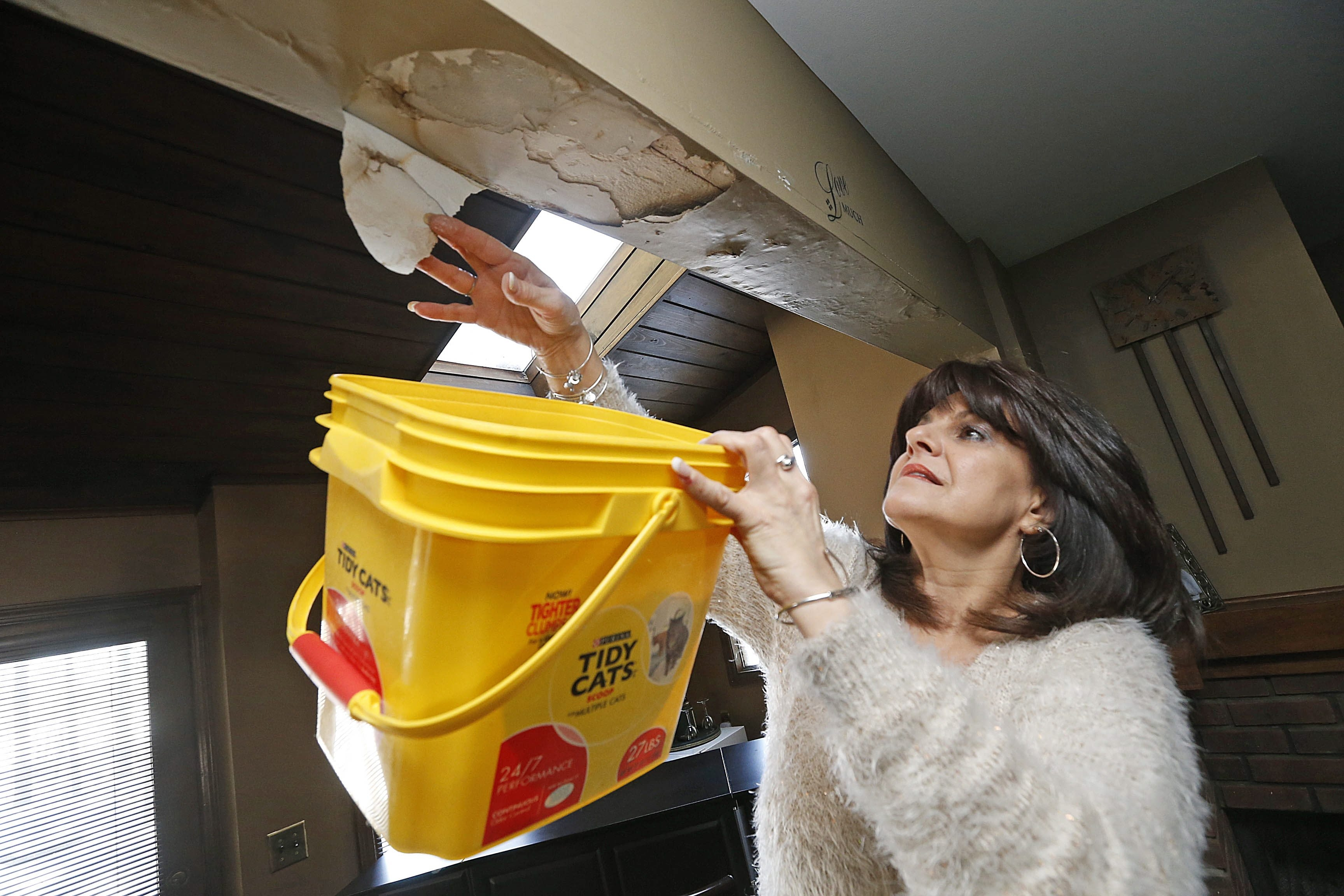 Homeowner Gemma Zotara uses an empty container to catch chunks of waterlogged drywall and joint compound in her Amherst living room on Monday.