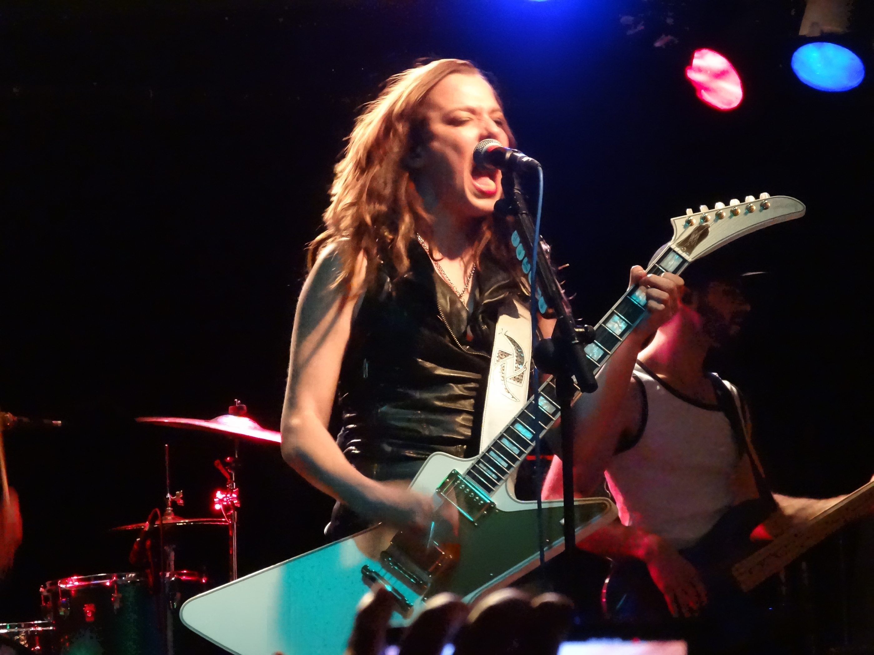 "Lizzy Hale and Halestorm have released the group's third effort, ""Into the Wild Life."""