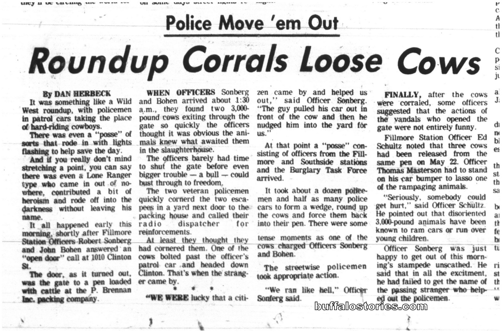 May 26, 1980: Cows on the loose on the East Side