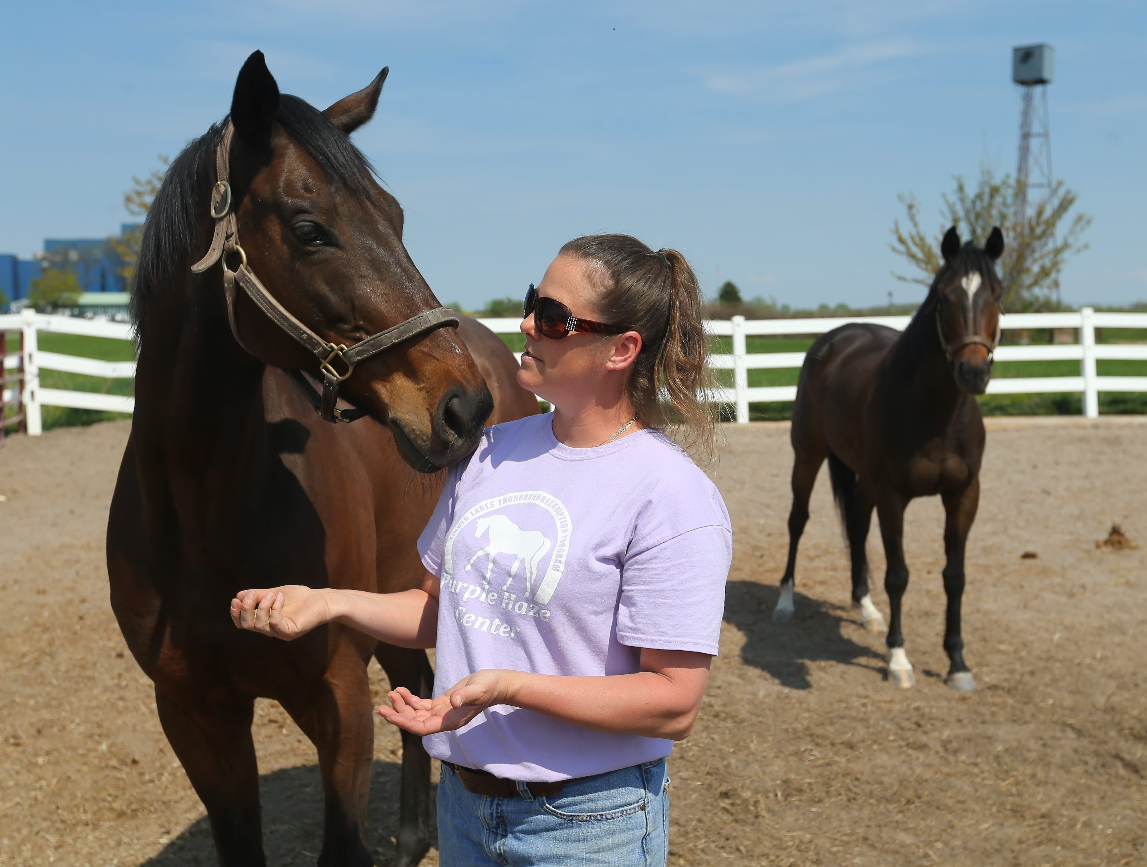 Thoroughbred adoption program director Julie Kisielewski spends some time with former racehorse 50 Cent on the grounds of Finger Lakes Gaming & Racing in Farmington on Friday.