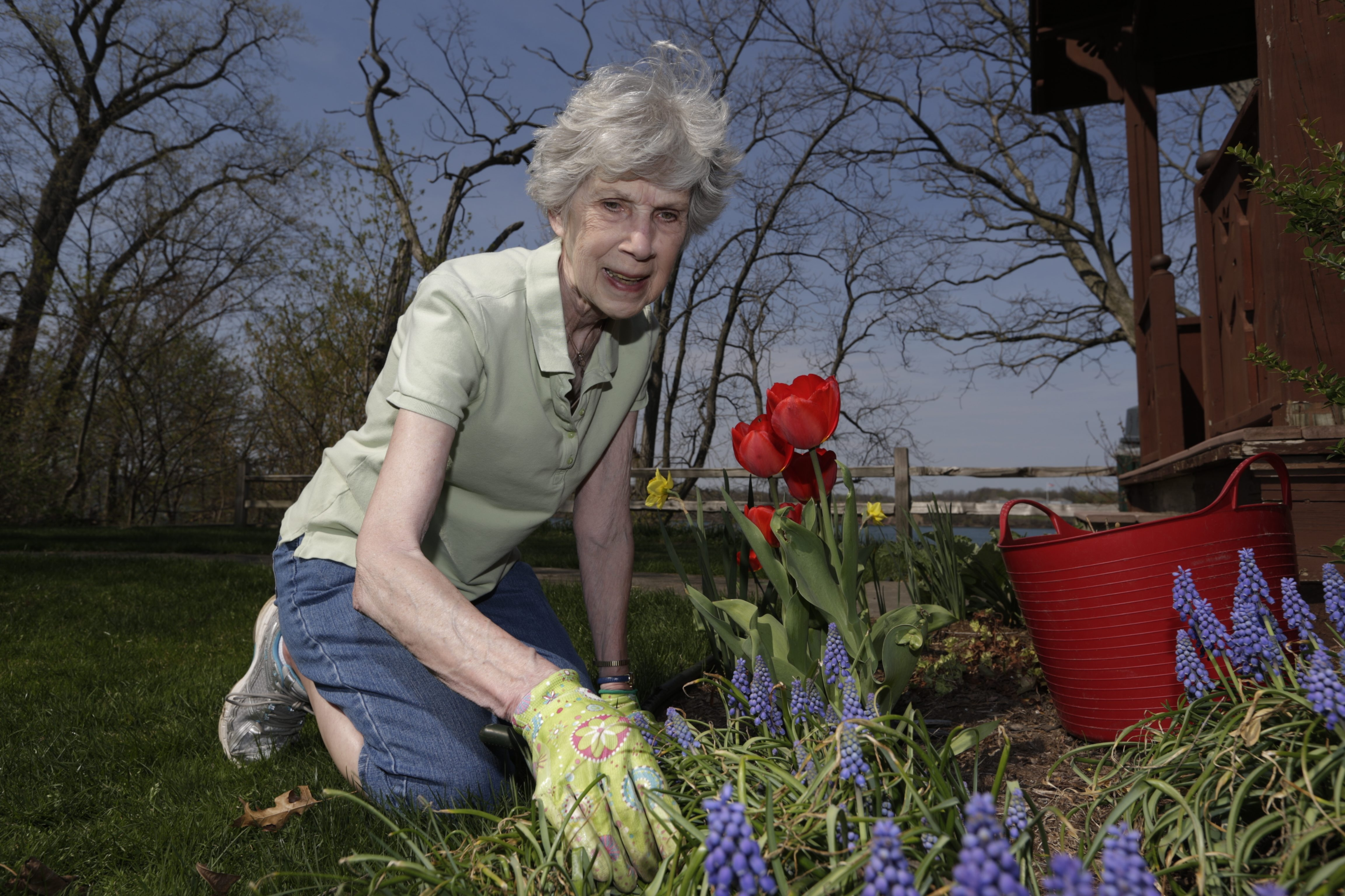 Marjorie McCollum is Youngstown's Citizen of the Year. Since she retired as Town of Porter assessor, she has been busy in many civic organizations.
