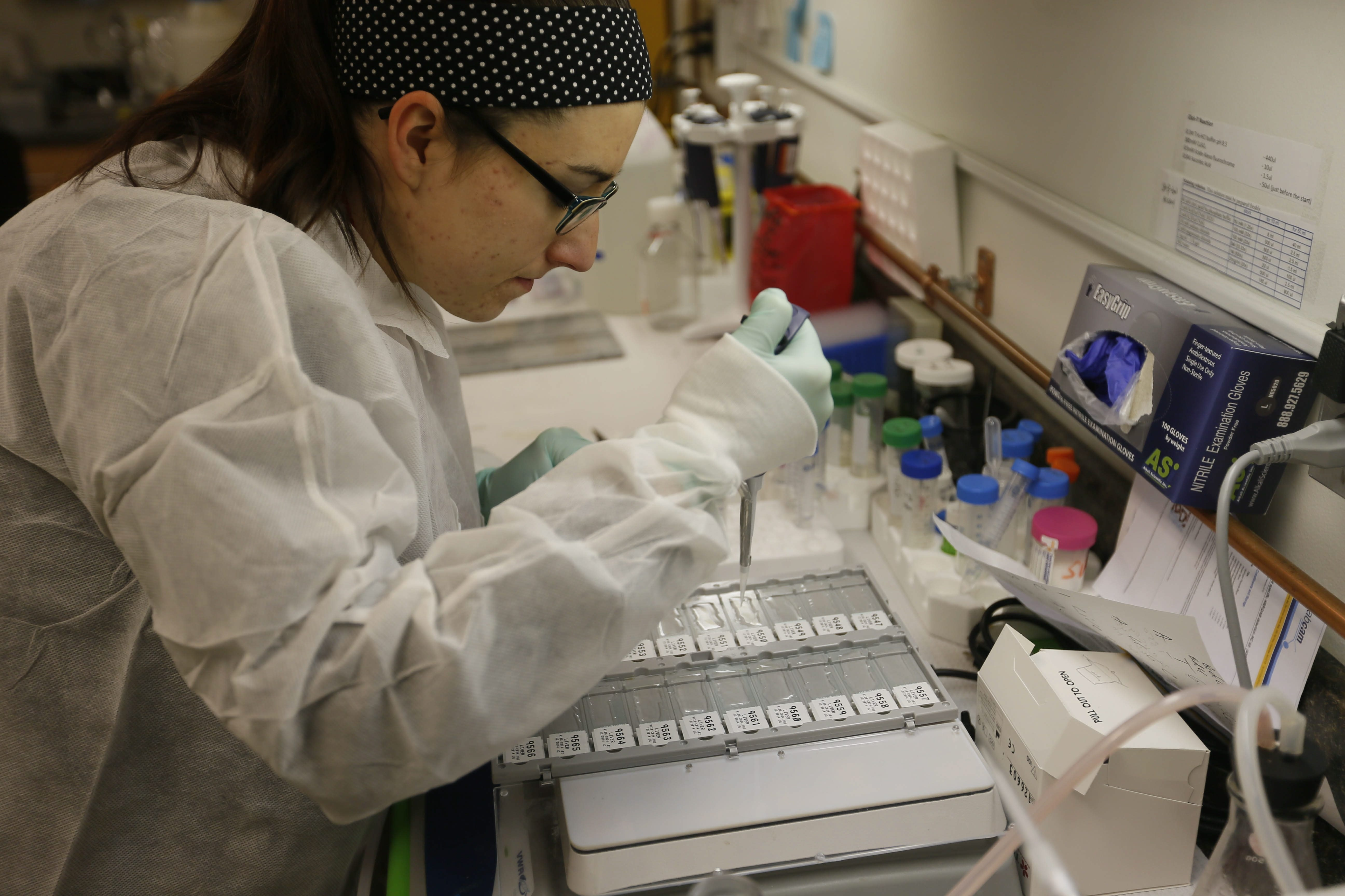 Researcher Jennifer Garrigan places antibodies on a set of slides at Buffalo BioLabs, a spinoff of Cleveland BioLabs.