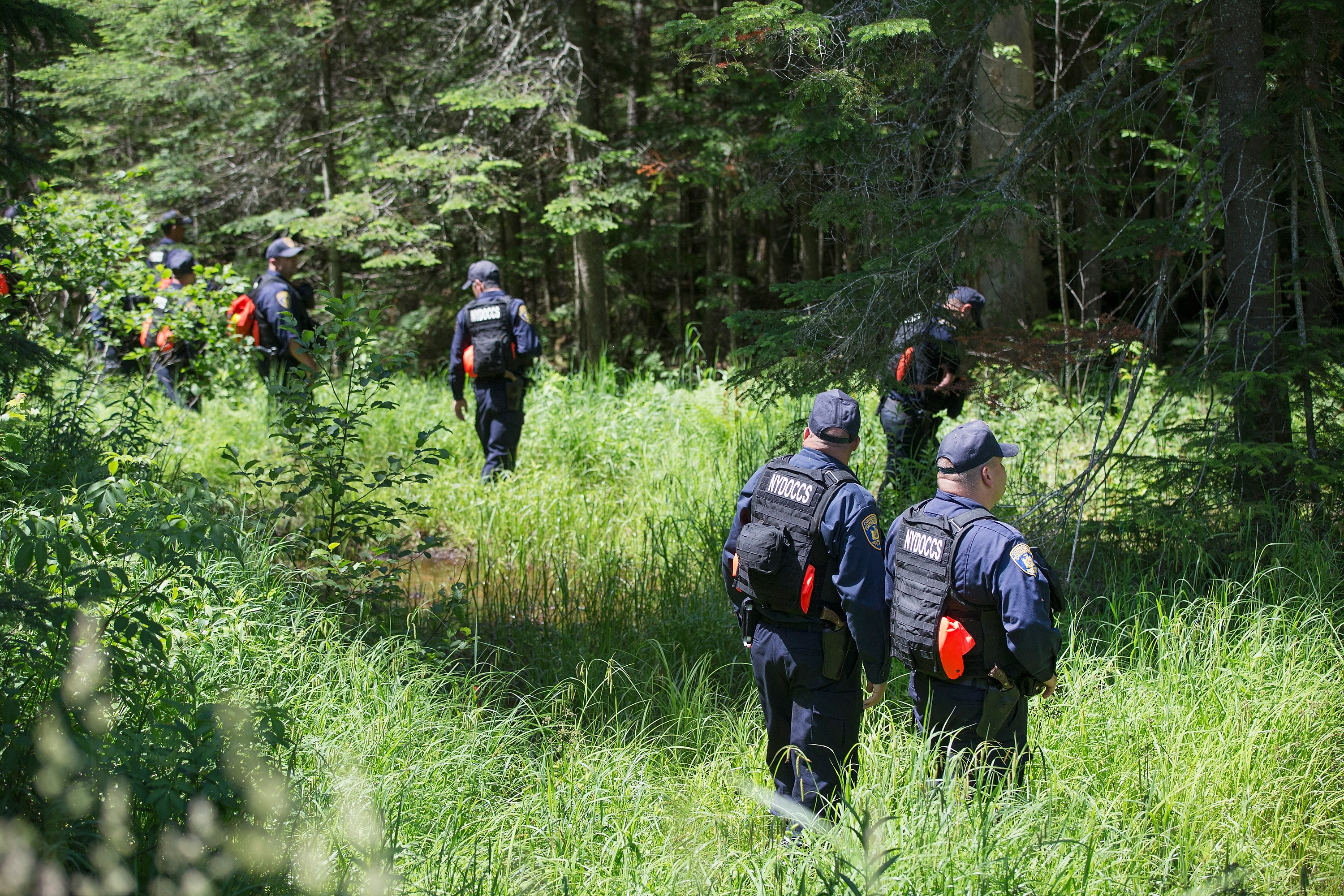 Law enforcement personel search a wooded area Thursday as the manhunt for convicted murderers Richard Matt and David Sweat continued near Mountain View. (Getty Images)