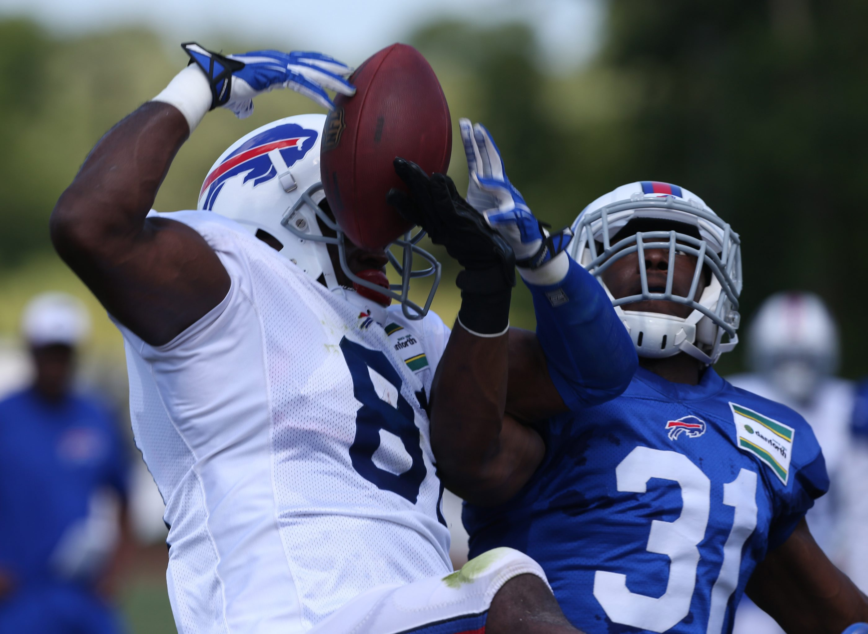 Buffalo Bills free safety Kenny Ladler (31) breaks up a pass intended for wide receiver Marcus Easley (81) during last year's training camp.