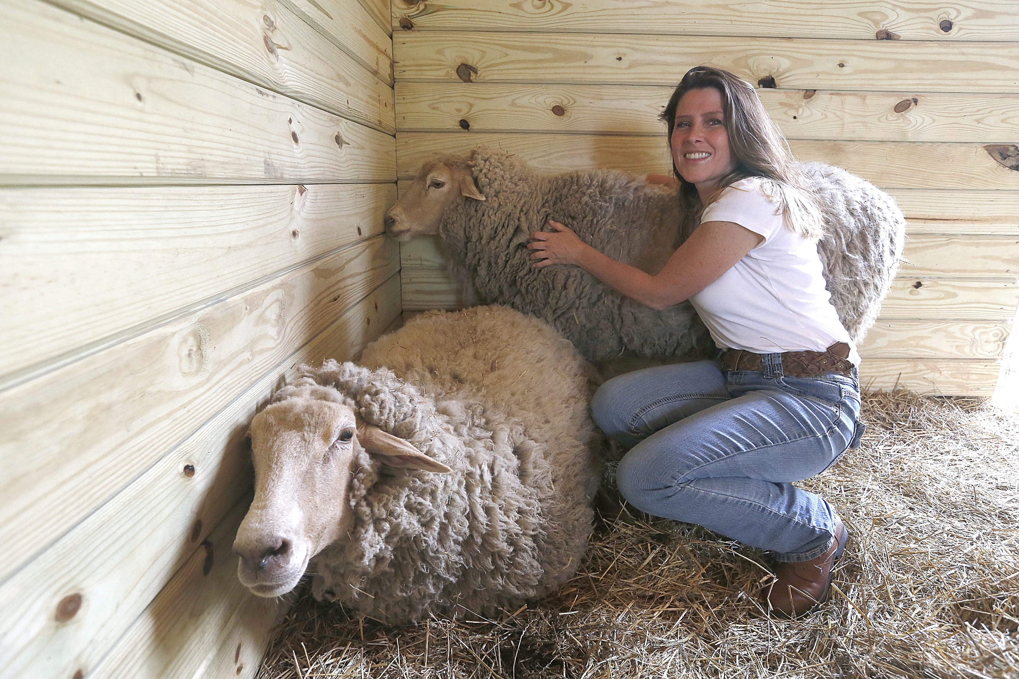 Tracy Murphy rescues a variety of farmed animals from bad situations and cares for them at Asha Sanctuary.
