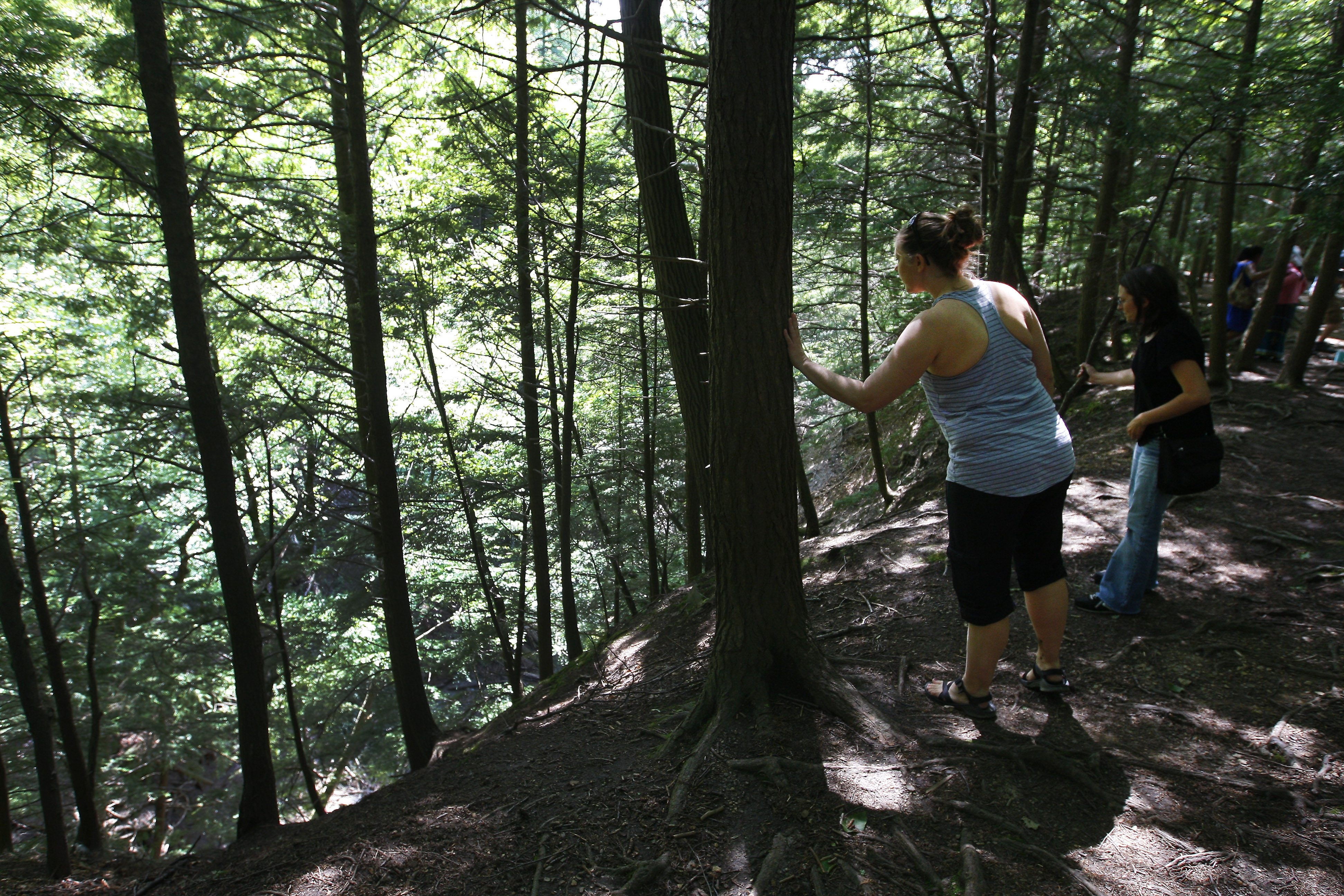 Hikers look over a steep embankment Friday on the Eternal Flame Trail in Chestnut Ridge Park in Orchard Park.
