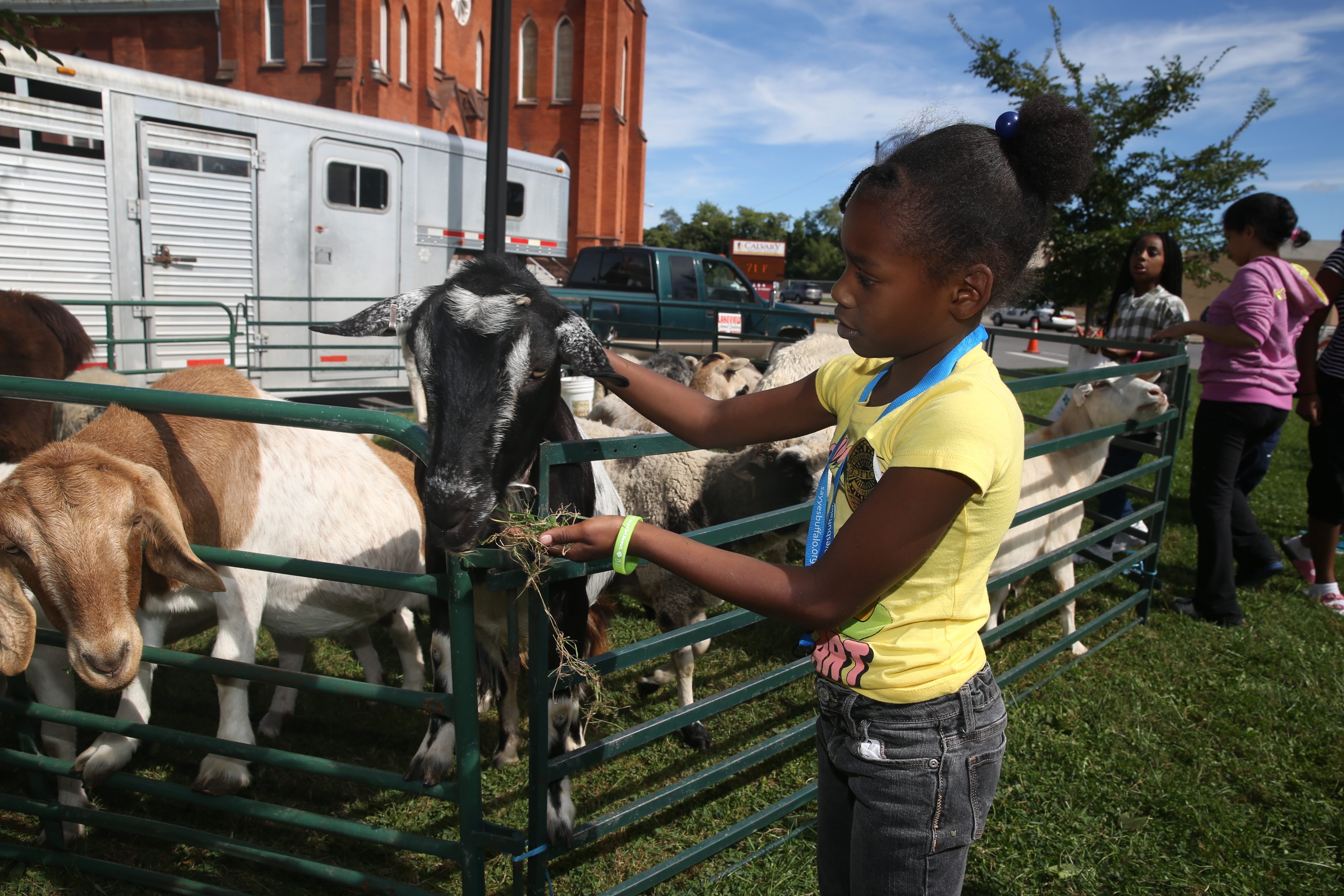 Nakyra Hilton, 7, feeds a goat at an animal pen as neighborhood comes together for Community Outreach Sunday at Calvary Baptist Church.