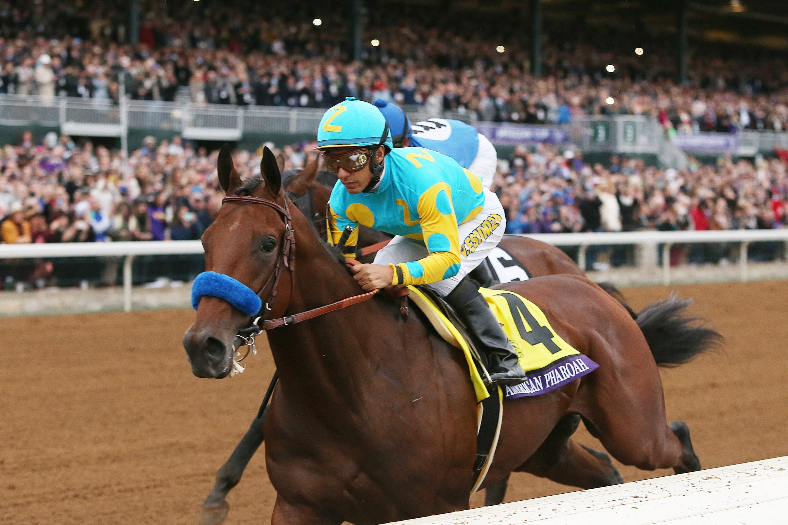 American Pharoah, with jockey Victor Espinoza up, leads the field heading into the first turn of the Breeders' Cup Classic.