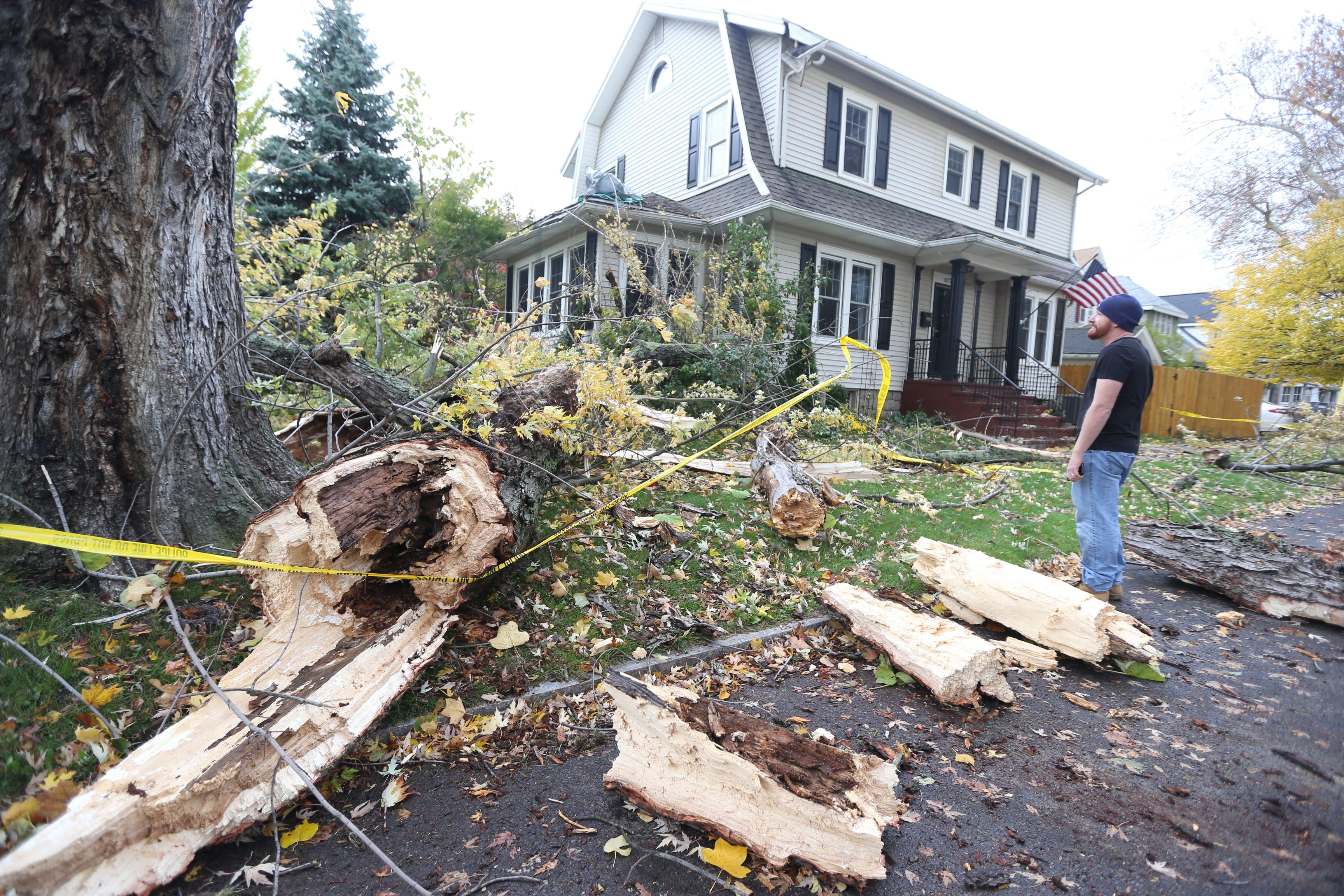 A tree fell on Kyle Fenske's home on McKinley Parkway on Thursday, Oct. 29, 2015.  (John Hickey/Buffalo News)