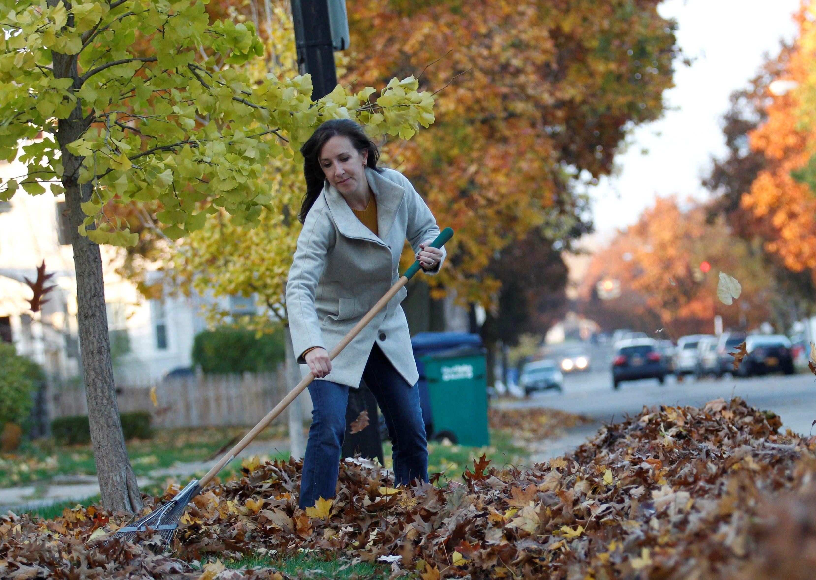 Keep up on your raking duties. (Sharon Cantillon/News file photo)