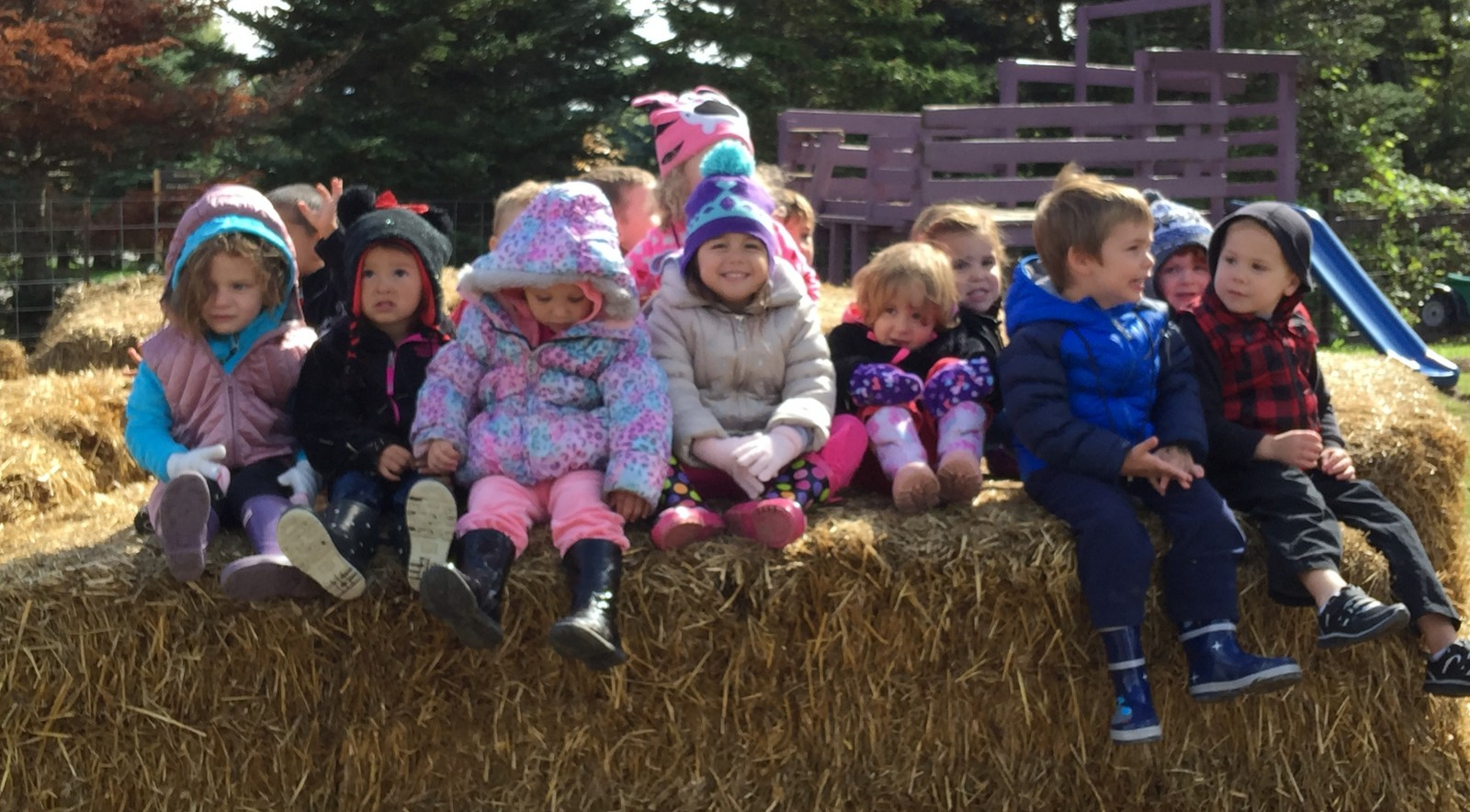 Kids can take a wagon ride, visit farm animals and pick their own pumpkins at Becker Farms.