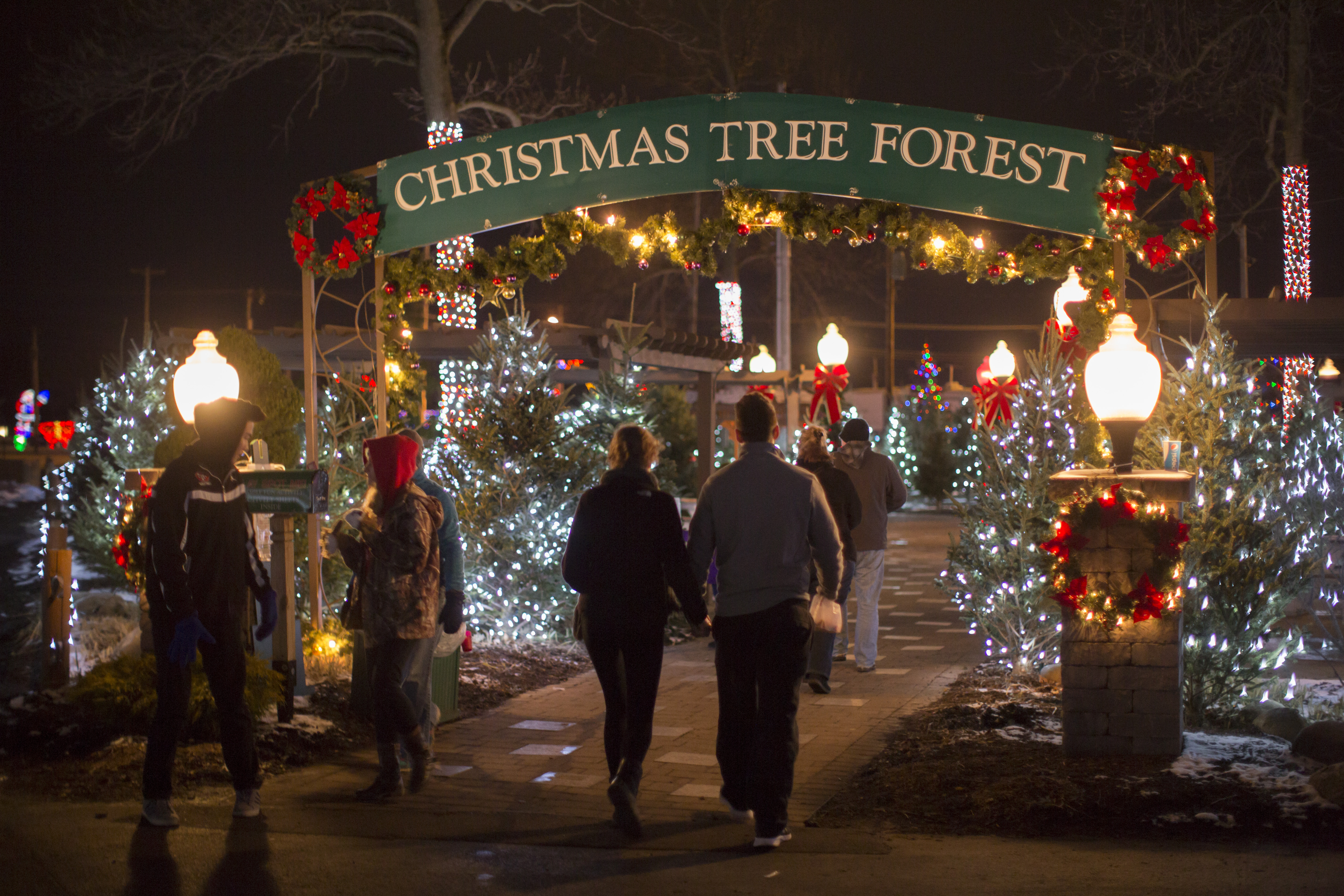The Hamburg Fairgrounds Festival of Lights is a great place to take the family for the holidays.