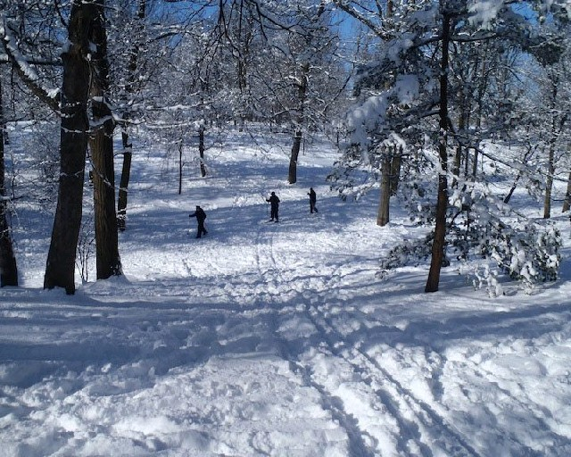 Cross-country skiers can get more for their fun this winter by prepping Wednesday at the Buffalo Nordic Ski Club open house. (Buffalo News file photo)