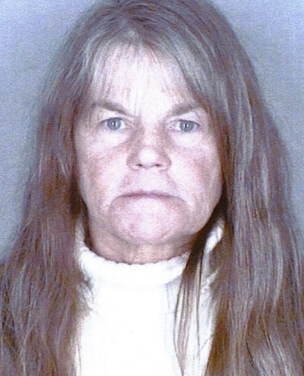 Judith Vergien, 58, of West Falls, faces multiple drunken driving charges after her arrest Wednesday by Orchard Park police.