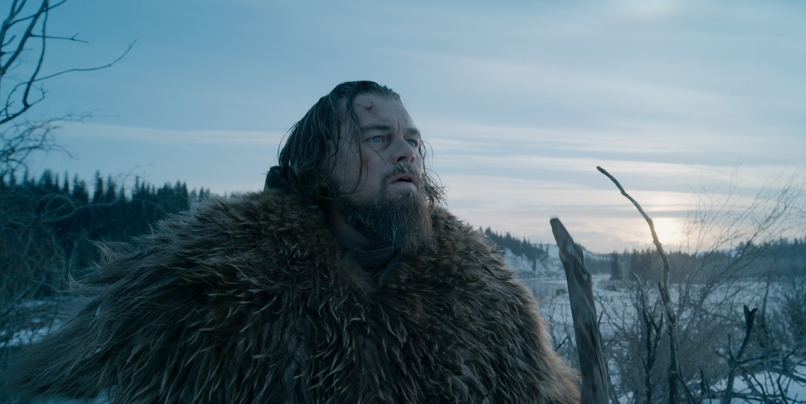 Leonardo DiCaprio stars in 'The Revenant.'