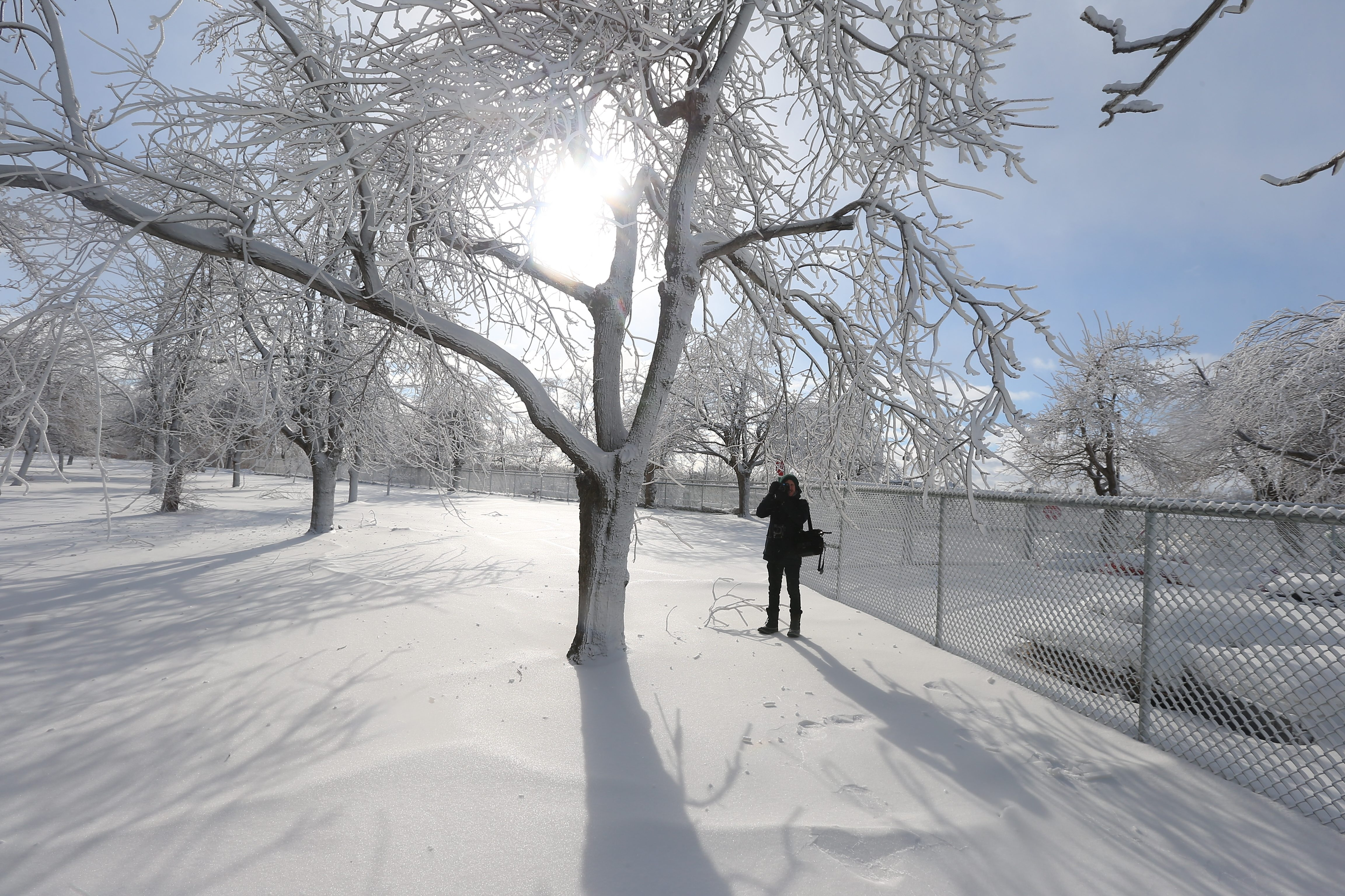 Mario Wezel, a photographer from Hanover, Germany, takes photos on Tuesday at Niagara Falls State Park, where mist from the falls turns trees into ice sculptures. The temperature at the time was 14 degrees.