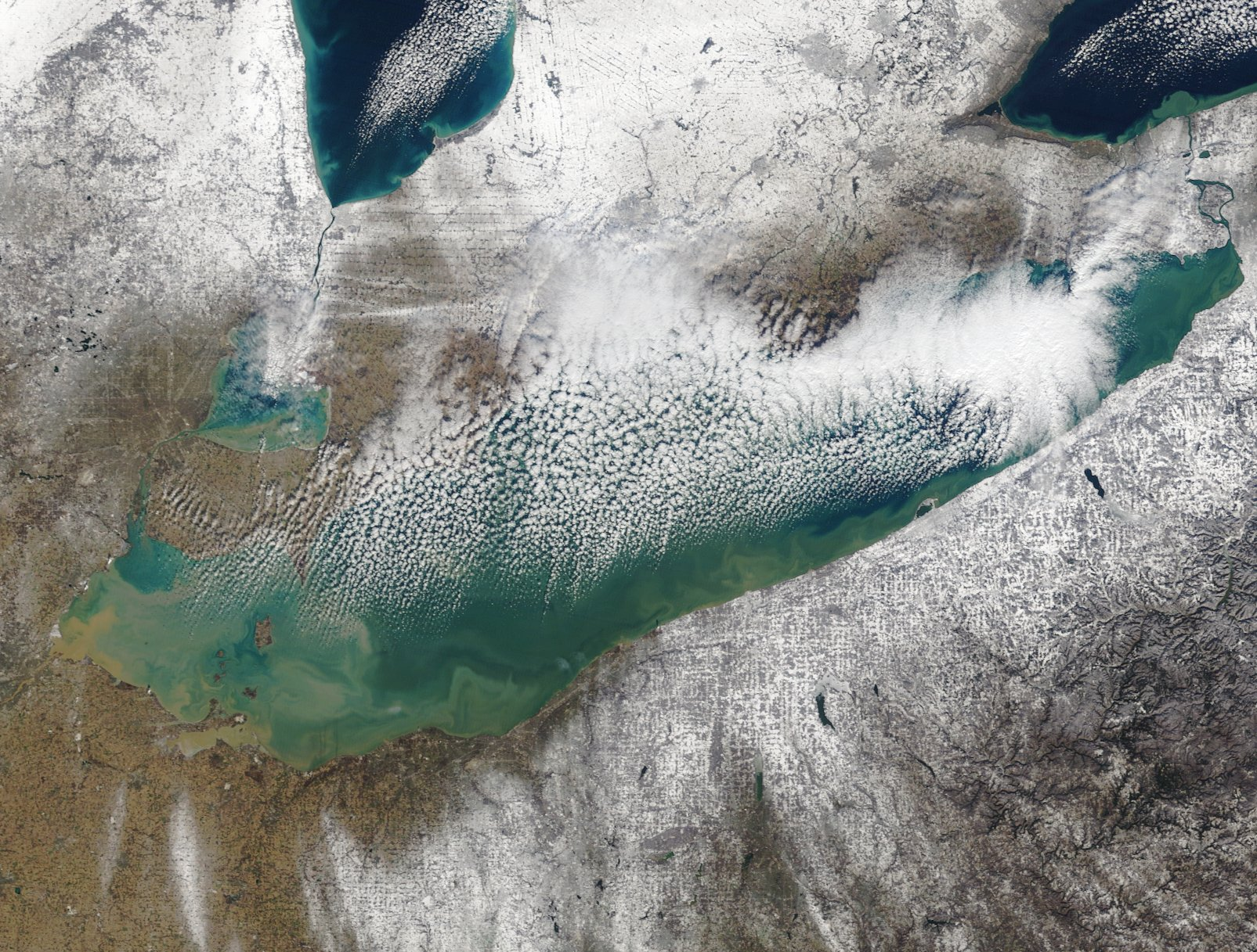 The recent snowfall looks like power sugar around the wide open, blue-green waters of Lake Erie. (NASA)