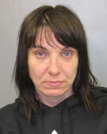 Tammy Kathke, 46, of Lockport, faces a drunken driving charge. (State Police)