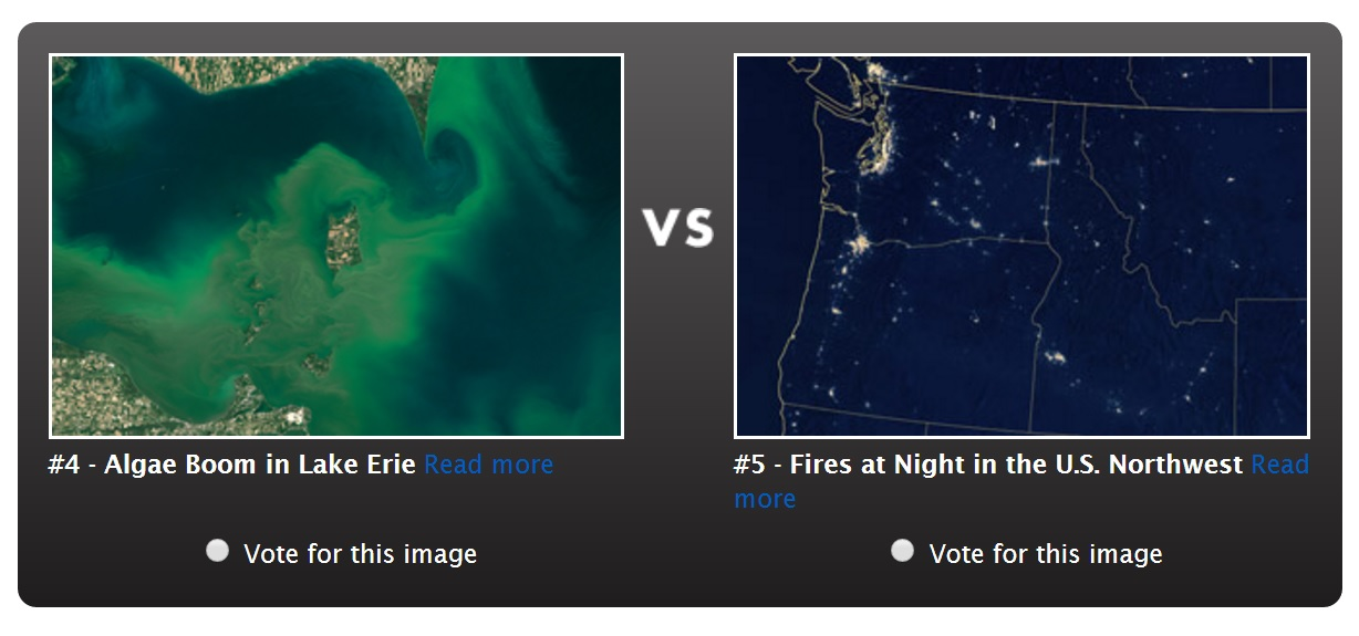 A bright-green algal bloom over western Lake Erie is going up against a night-time image of wildfires in the Pacific Northwest. (Earth Observatory)