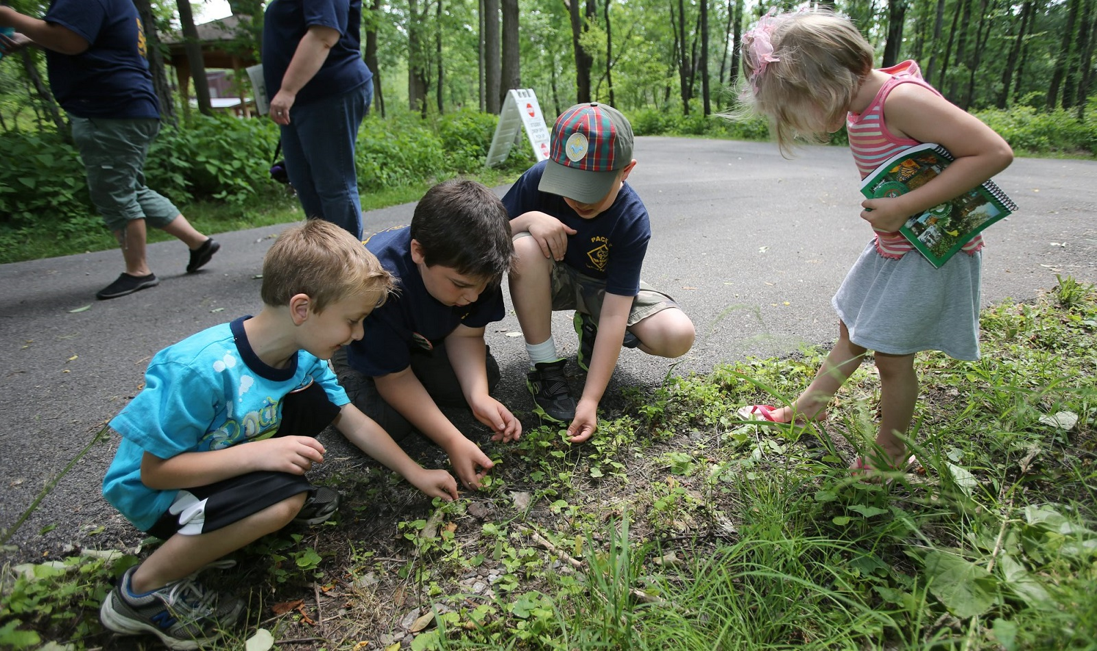 Reinstein Woods is holding a fall festival on Sept. 16.  (Buffalo News file photo)