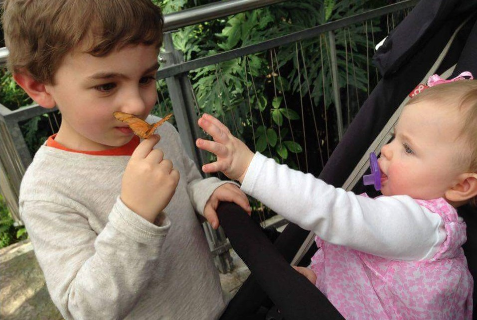 Caden and Marlana Johnson of Hamburg think the butterflies are pretty neat.