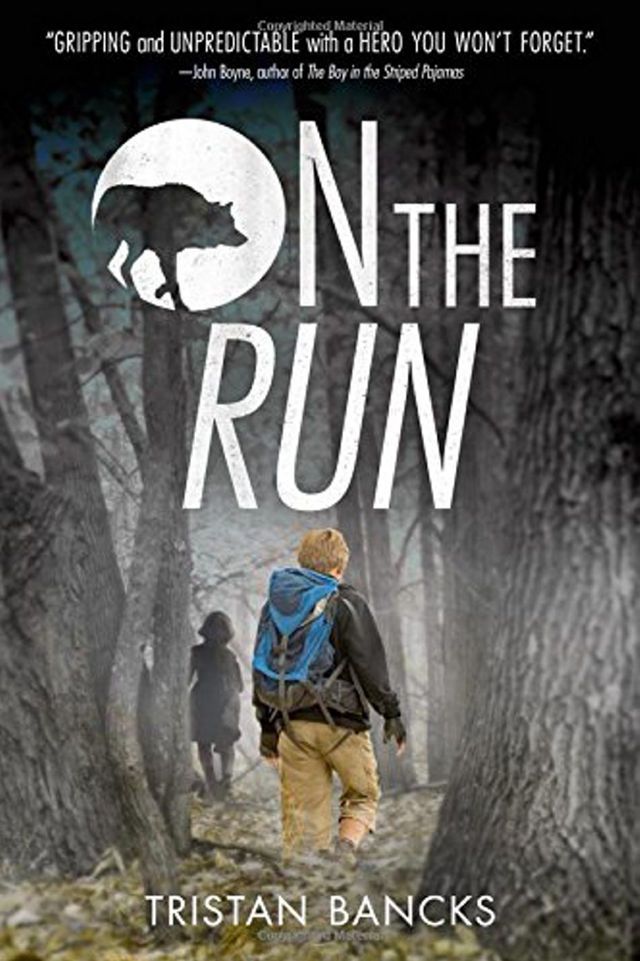 Books in Brief: On the Run by Tristan Bancks; Ideas Are All Around by Philip C. Stead;