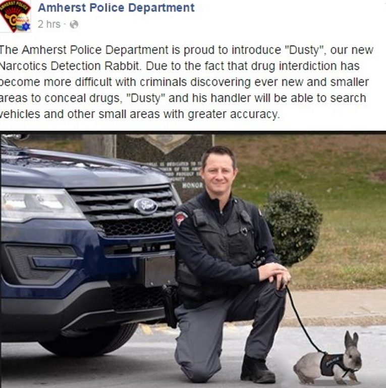 Amherst K-9 Officer Thomas Grillo and the newest member of the force.