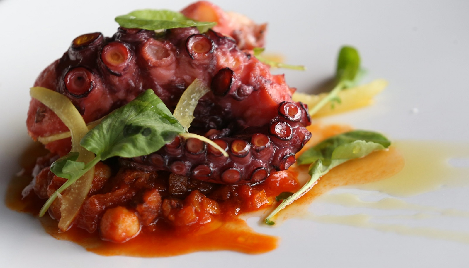 William K's grilled Spanish octopus is with Catalonian chorizo and chickpea stew. (Sharon Cantillon/Buffalo News)
