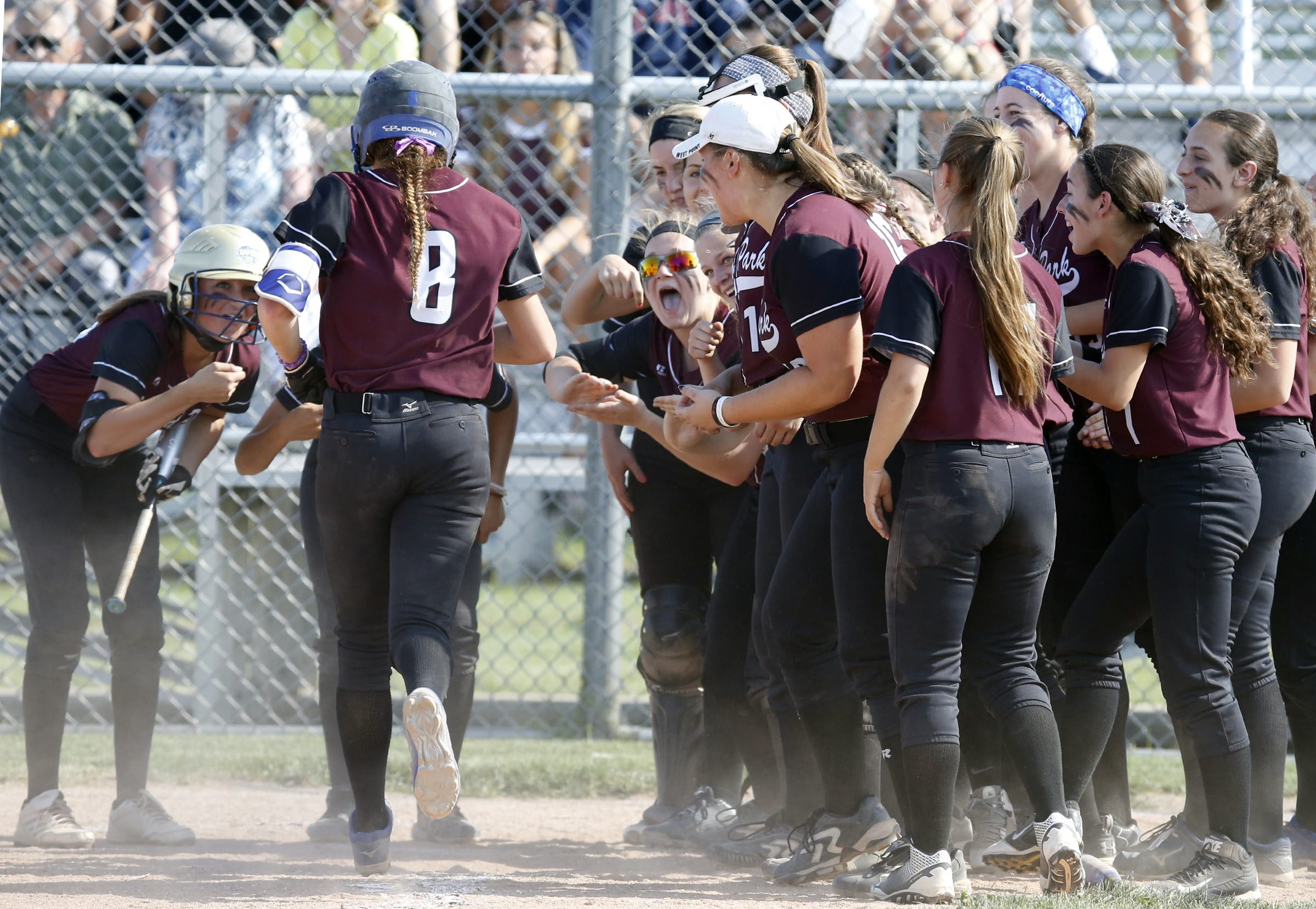 Orchard Park's Madison Stewart is congratulated by teammates after hitting a home run against Niagara Falls during the Section VI Class AA final. (Harry Scull Jr./Buffalo News)