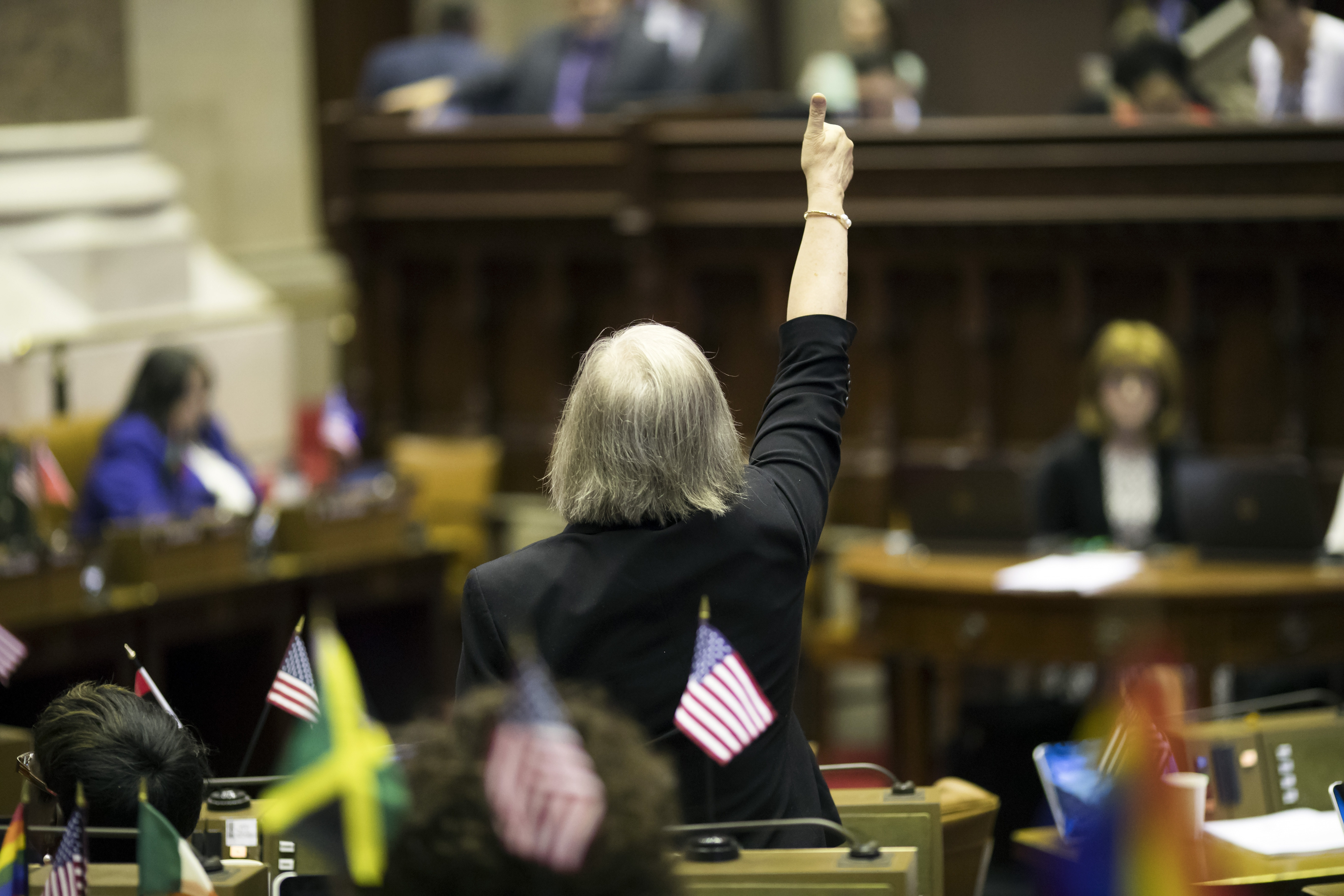 Voting in the New York State Assembly one day after the legislative session was scheduled to end, in Albany, June 17, 2016.  (New York Times)