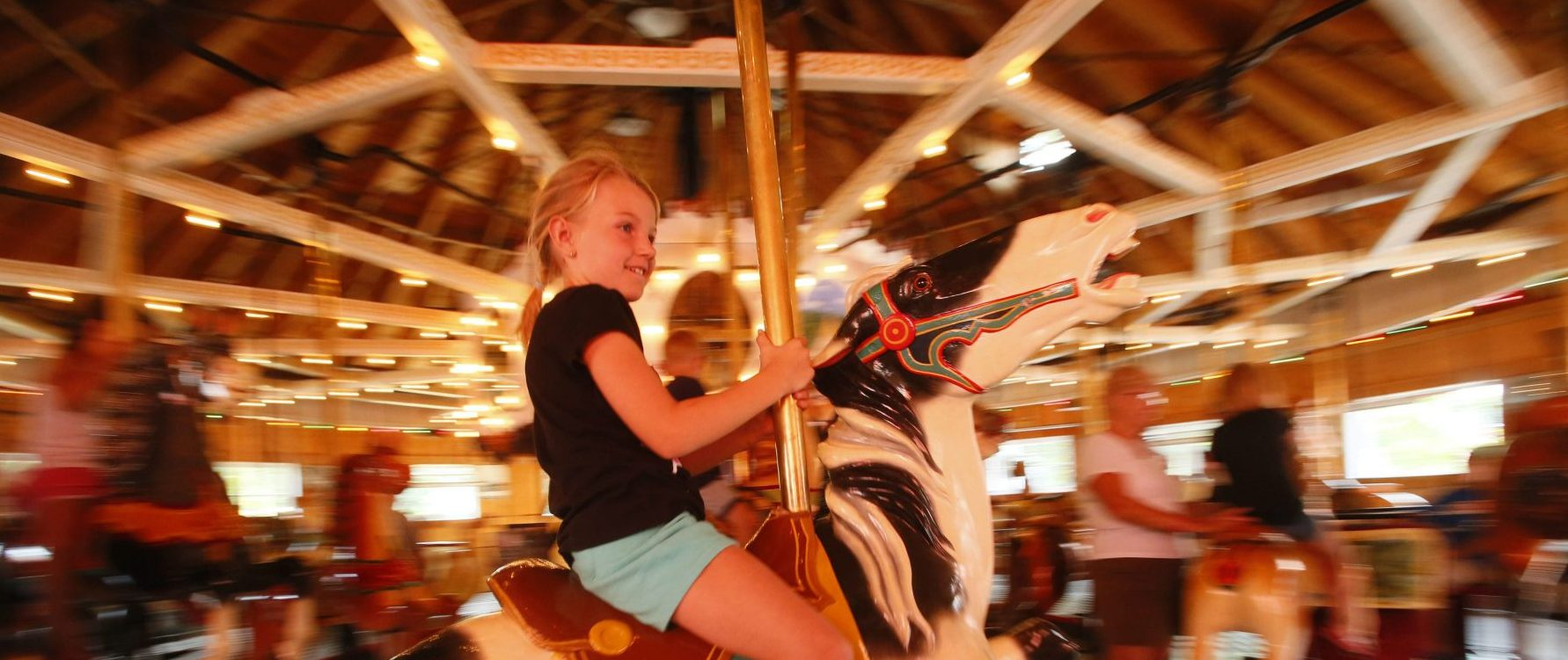 Learn about carrousel horses and even ride one at the Herschell Carrousel Factory Museum in North Tonawanda. (Derek Gee/News file photo)