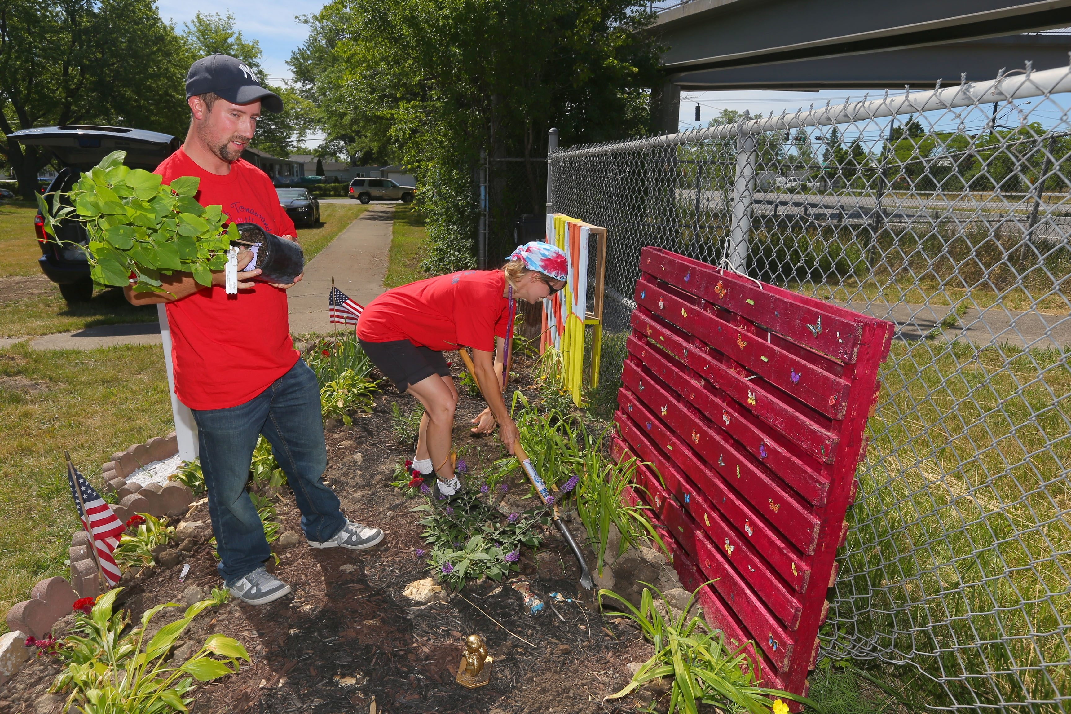 Mandy Sampson, a teacher's assistant at Riverview Elementary who started the Millstream Educational Community Gardens project, and Brian Fose, leader of the volunteer group Team Up to Clean Up, plant a Dutchman's Pipe vine.