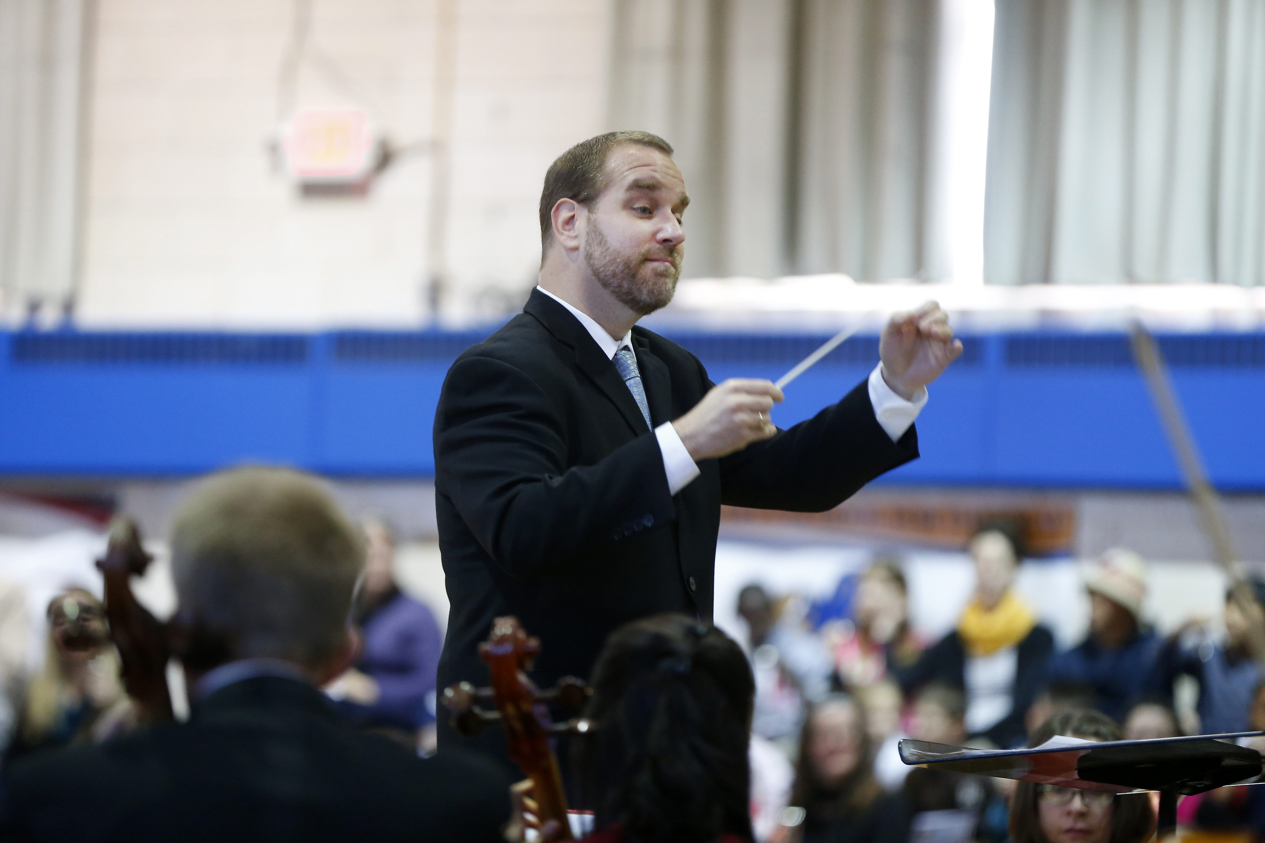 A free Buffalo Philharmonic Orchestra concert Sunday in Niawanda Park will be conducted by Stefan Sanders.