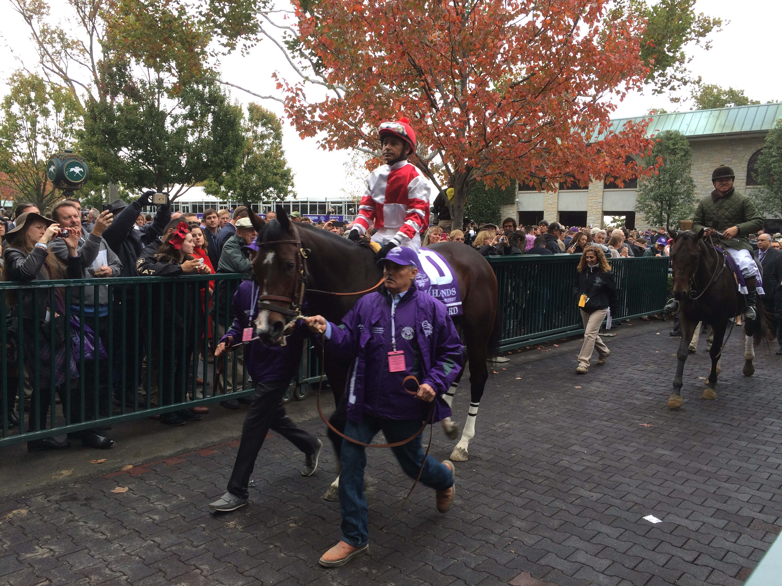 Songbird at Breeders' Cup at Keeneland last October will run during Saratoga's opening weekend