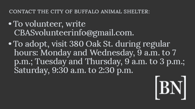 factlist-contact-the-city-of-buffalo-animal-shelter