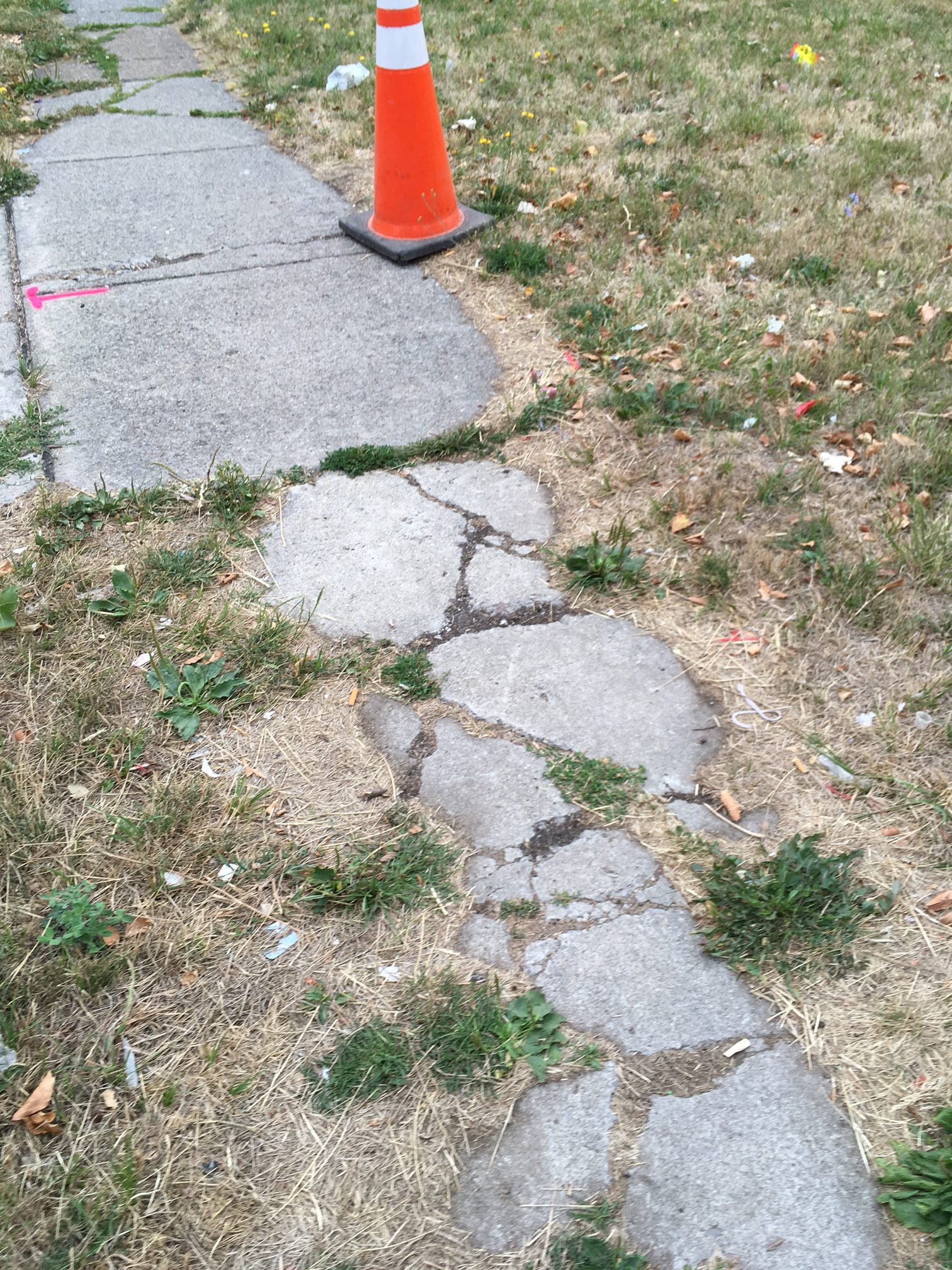 A 'before' sidewalk  picture on Moselle Street