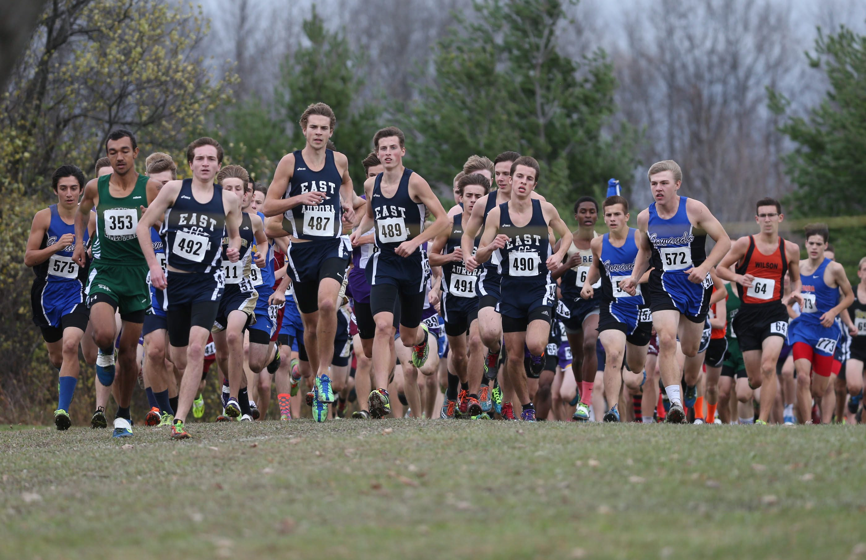 Start of the 2015 Section VI cross country championships. (James P. McCoy/ Buffalo News)