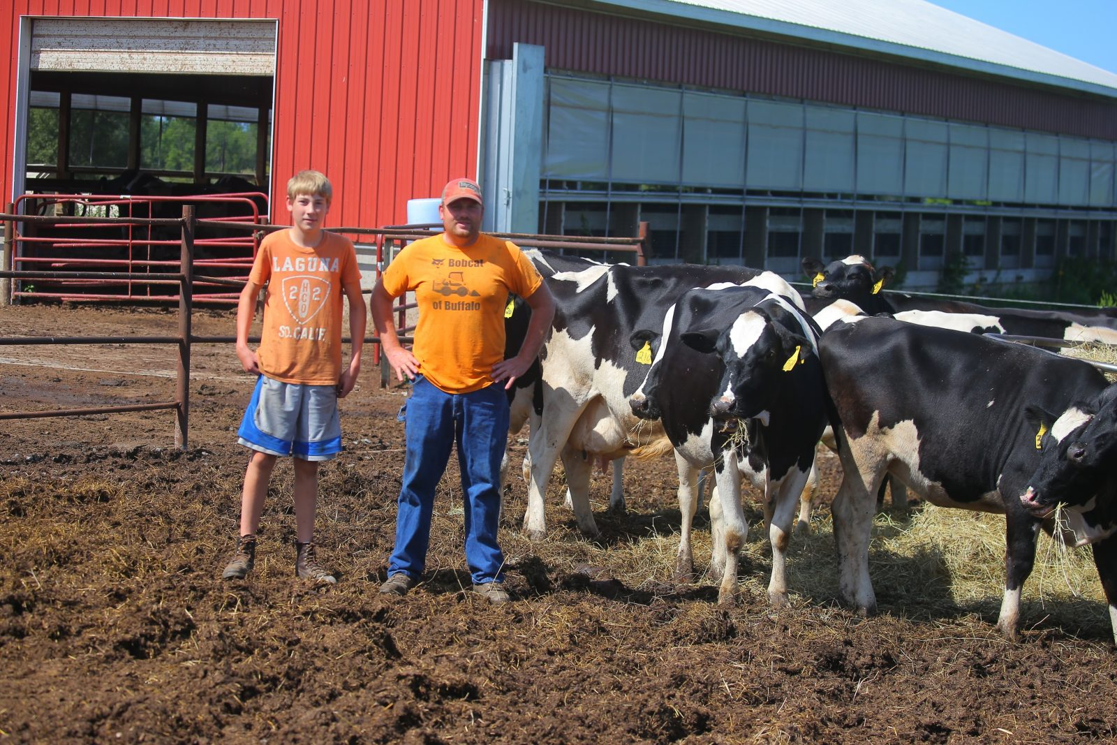 Tyler Wight, 13, and his father, Darren, with their cows at Wight Farm in Akron. (John Hickey/Buffalo News)