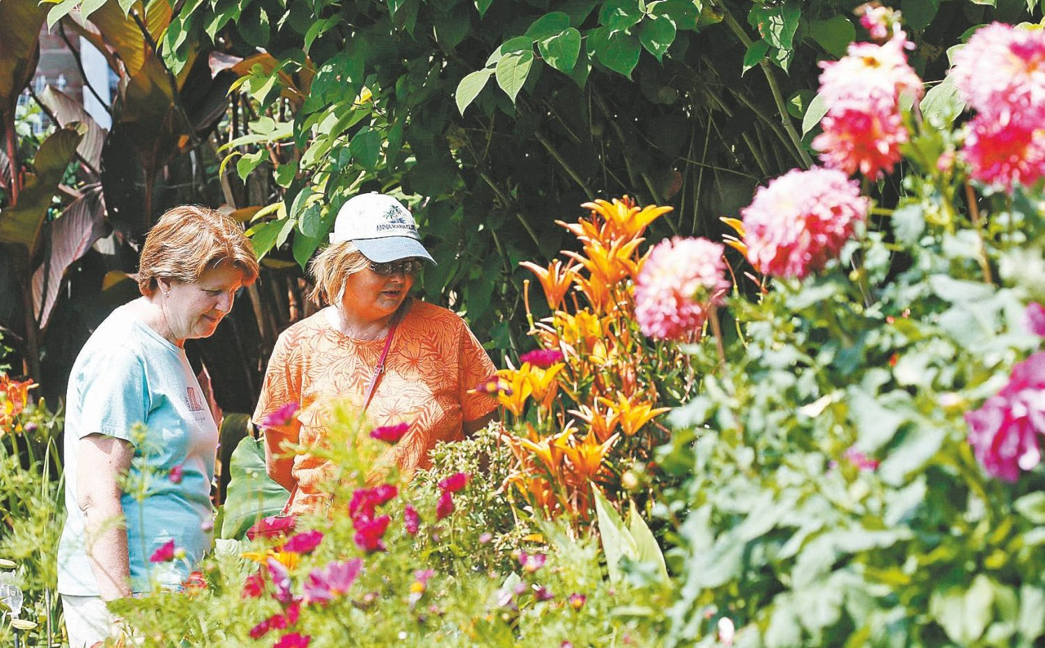 Two people enjoy the 2015 Garden Walk, unbeknownst that during the same event, a different kind of seed was being planted in the mind of Jeffrey Gundlach. (Derek Gee/Buffalo News)