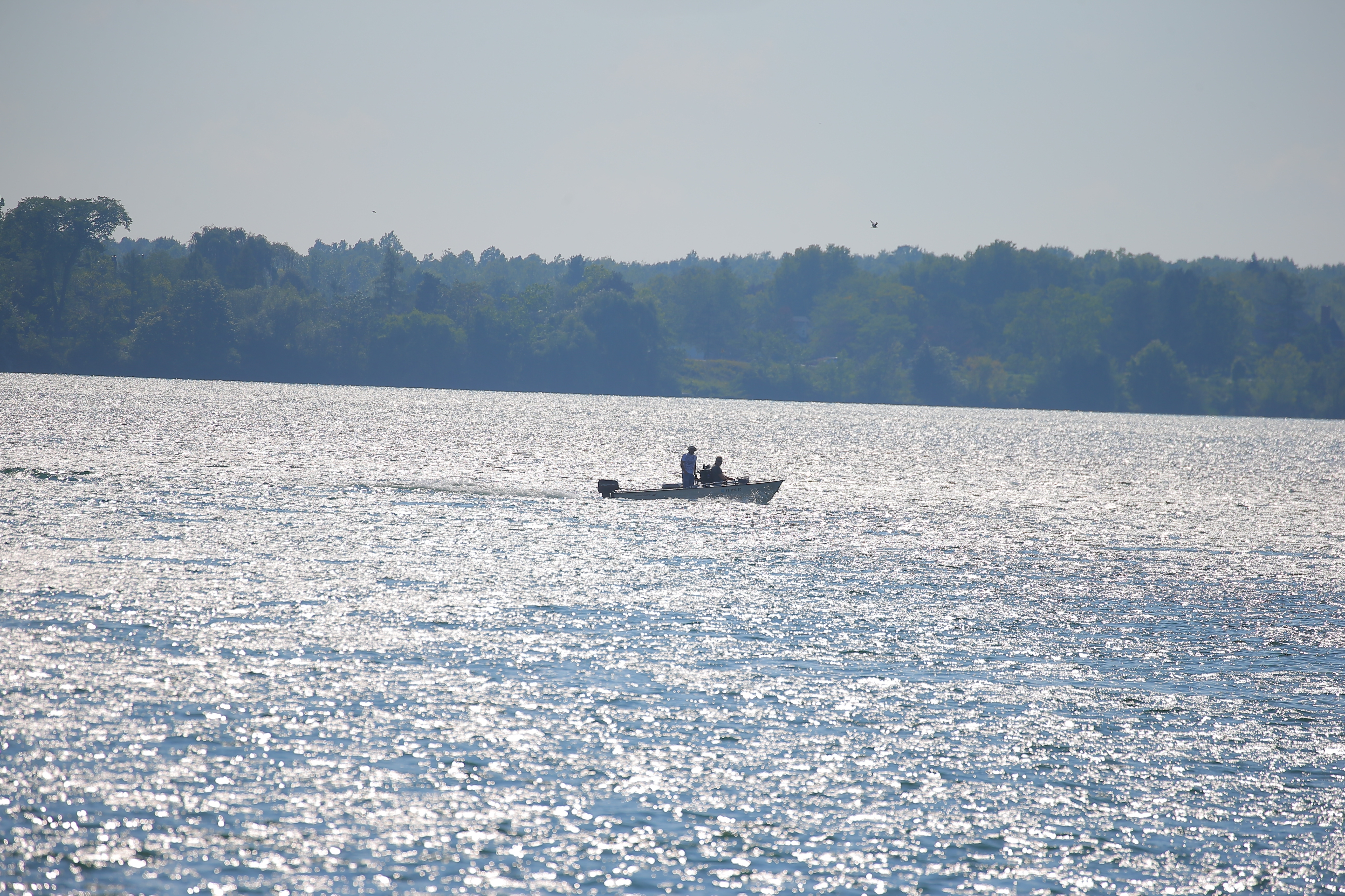A boat between Strawberry and Grand Island on the Niagara River (John Hickey/Buffalo News)