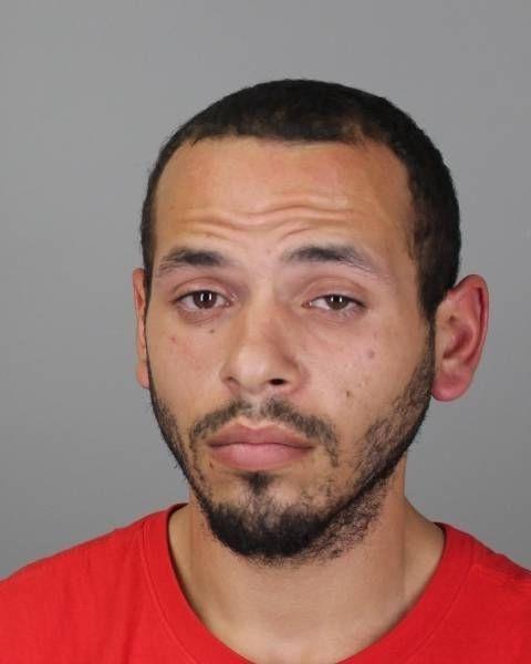 Michael J. Brock, 24, of the Town of Tonawanda faces multiple felony and misdemeanor charges. (City of Tonawanda police)