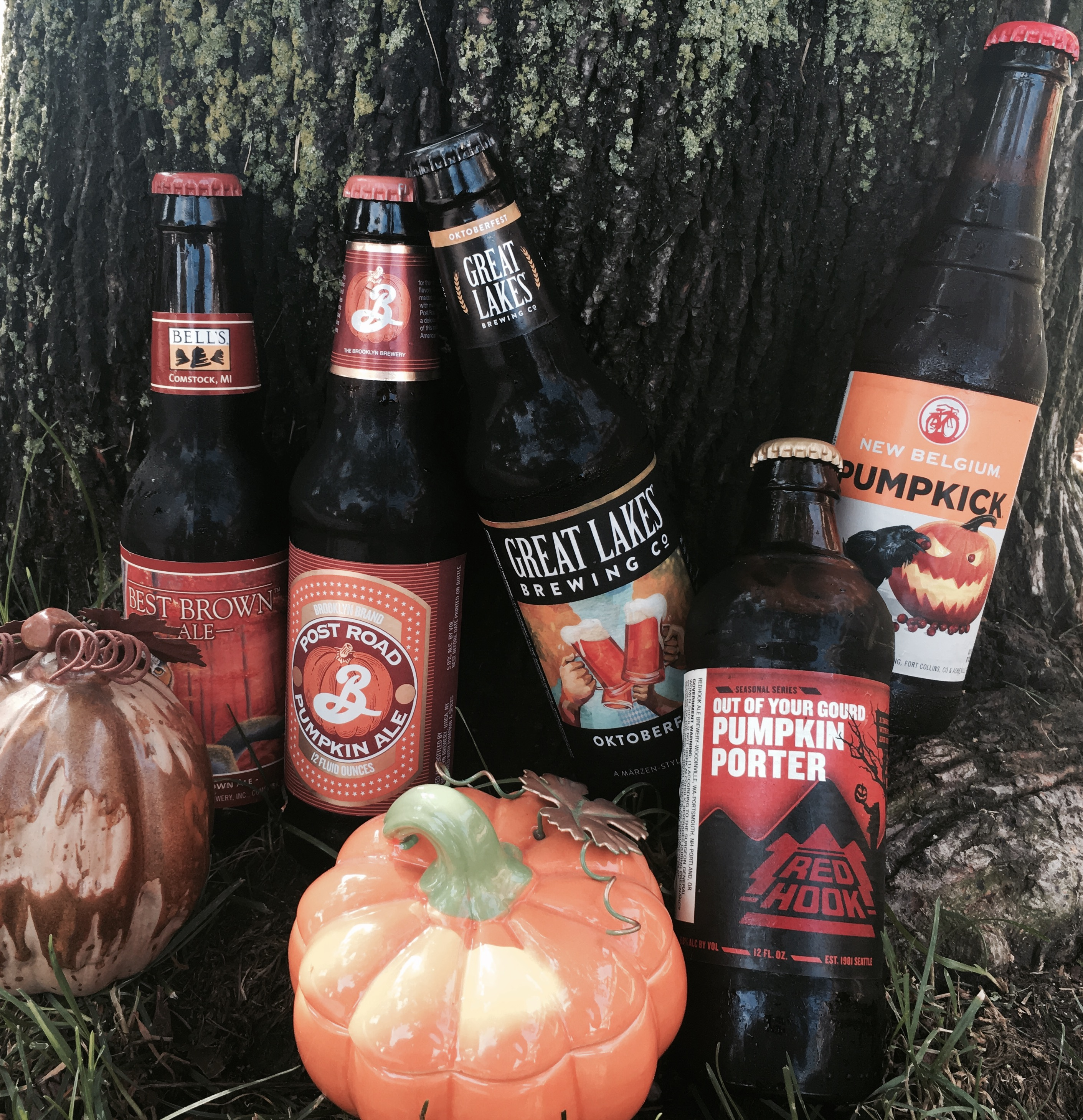Fall brings a fleet of new seasonal beers to stores and bars across Western New York.