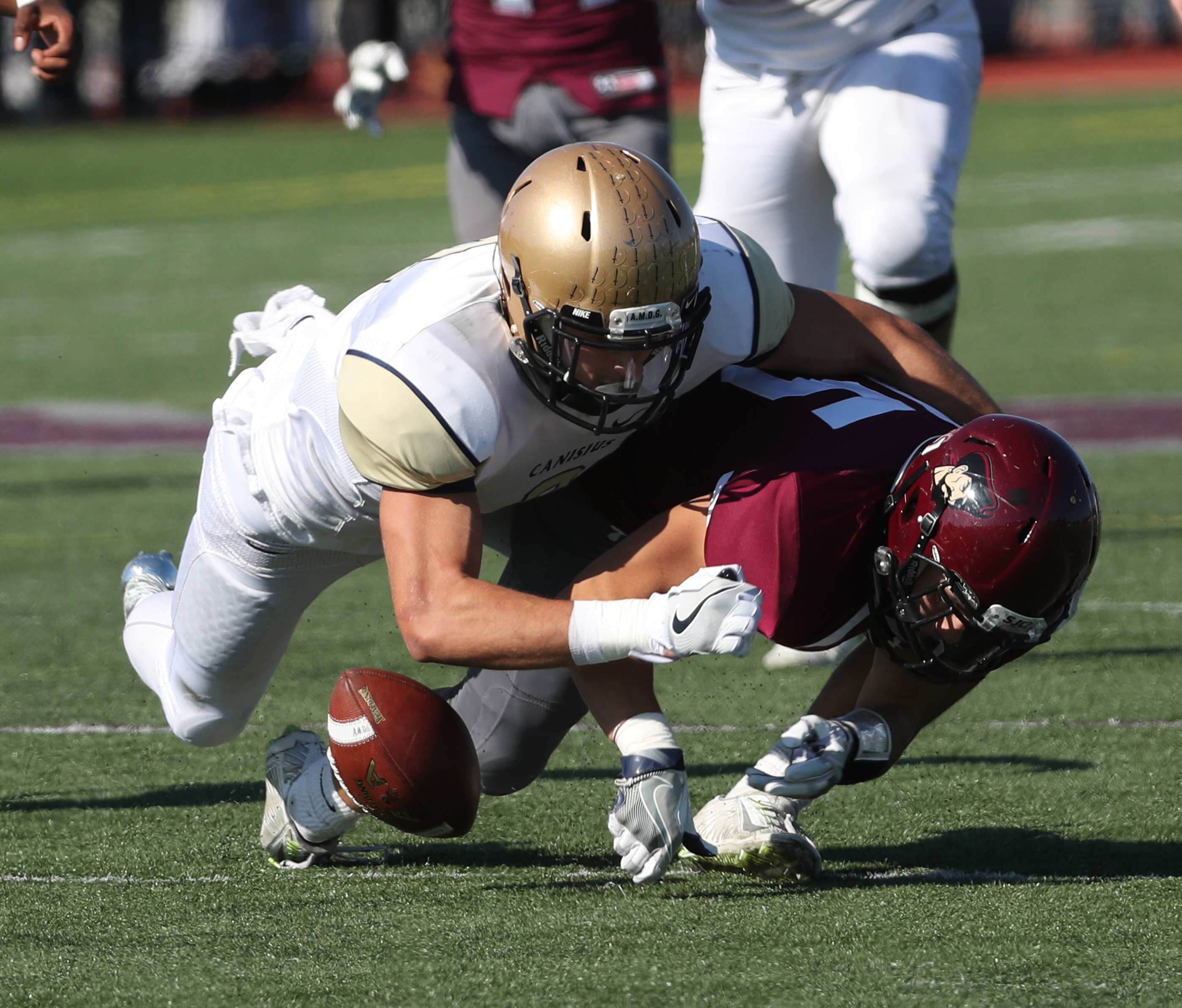 Canisius Zeke Margaritis forces a fumble on a punt recovered by teammate Kenyatta Huston that led to a Crusaders touchdown during Saturday's win at St. Joe's.  (James P. McCoy/ Buffalo News)