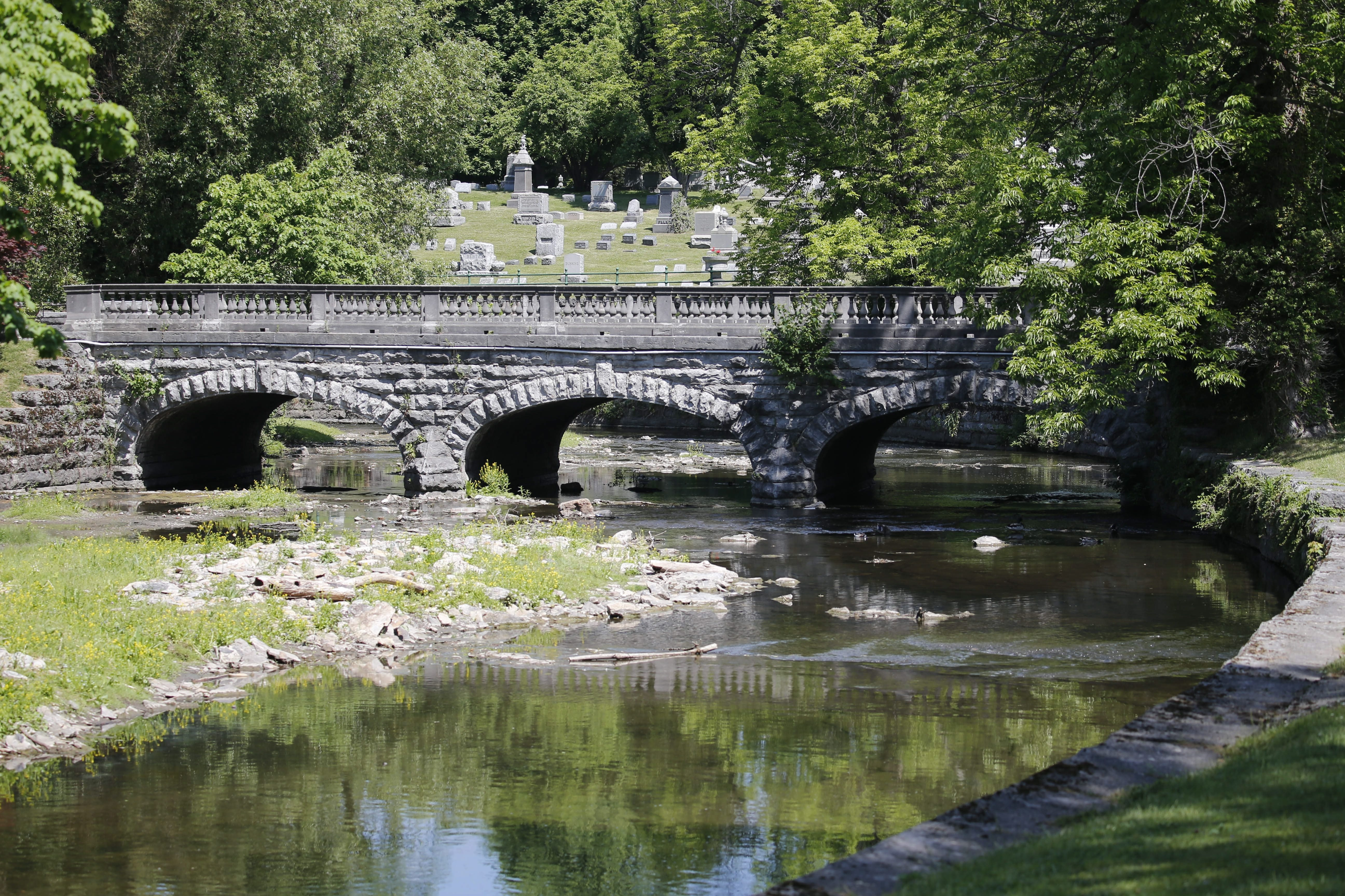 Scajaquada Creek cleanup effort starts in Buffalo's Forest Lawn cemetery