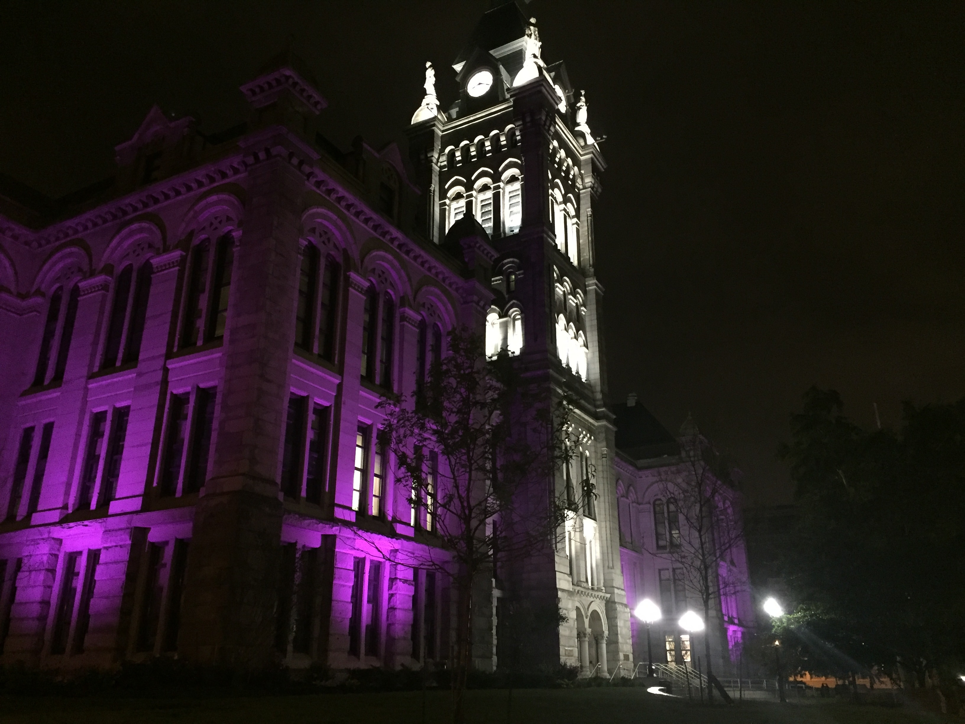Erie County will shine the light on domestic violence during the month of October by illuminating historic County Hall in the color purple.