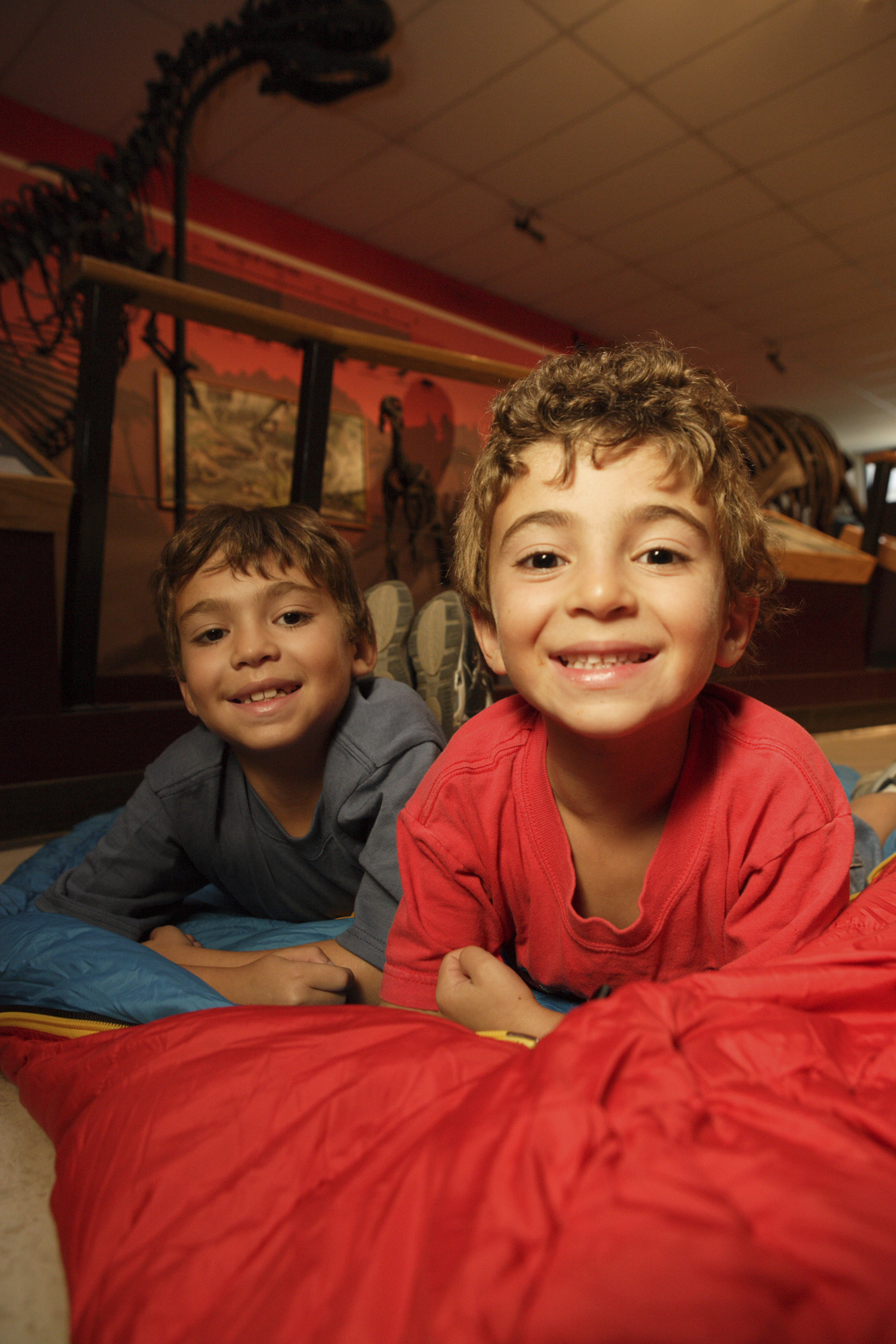 Kids can stay overnight at the Buffalo Museum of Science.