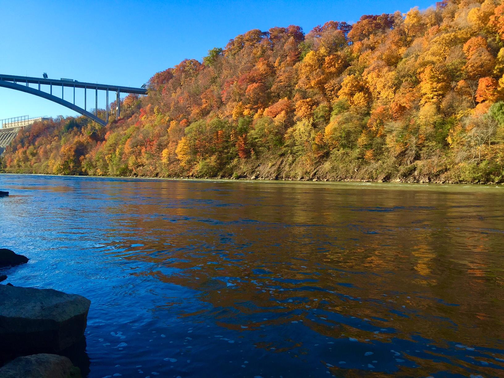 The Niagara Gorge can explode with autumn color. (Bob DiCesare/Buffalo News).