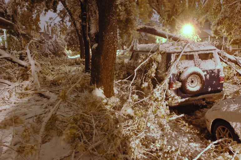 A large tree limb rests on top of a van and blocks Ashland Avenue during a bizarre October snow storm late Thursday night, October 12, 2006. (Derek Gee/Buffalo News)