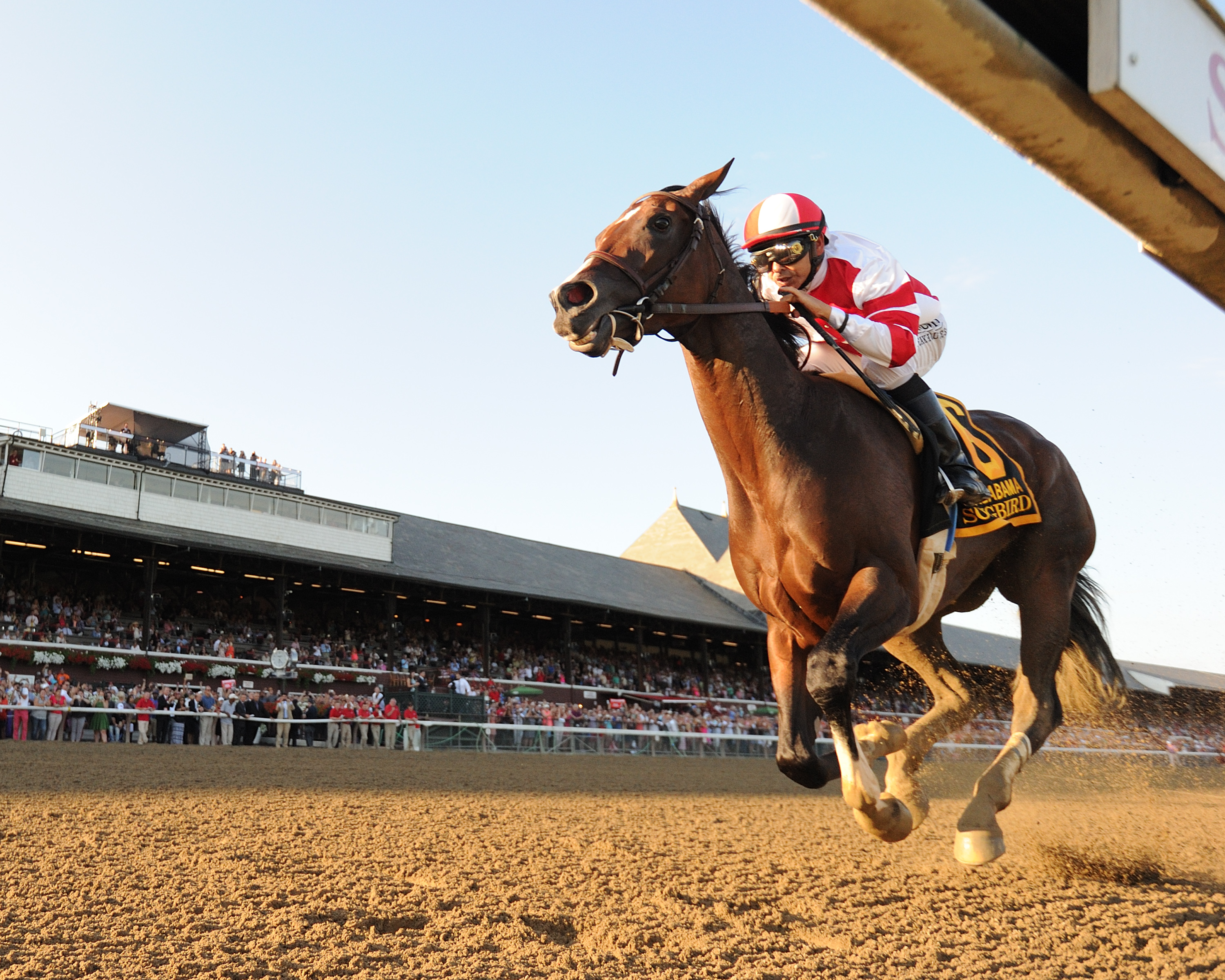 Songbird wins the Alabama at Saratoga Photo Credit: NYRA