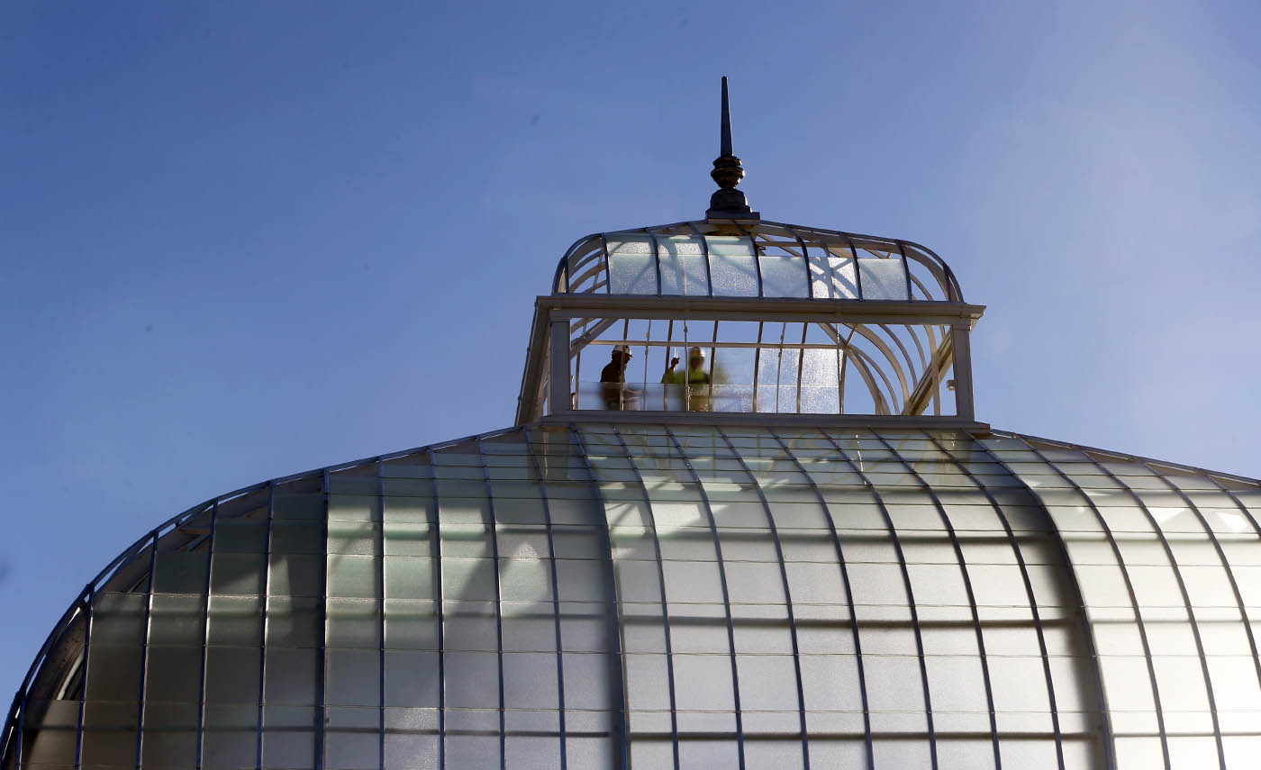 Ray Porter, left, Paul Costa, on right, glaziers from Jens Glass work on cupola, at Buffalo and Erie County Botanical Gardens, in Buffalo, N.Y. on Friday Oct. 14, 2016, these palms have matured taller than expected and have outgrown their home. (John Hickey/Buffalo News)
